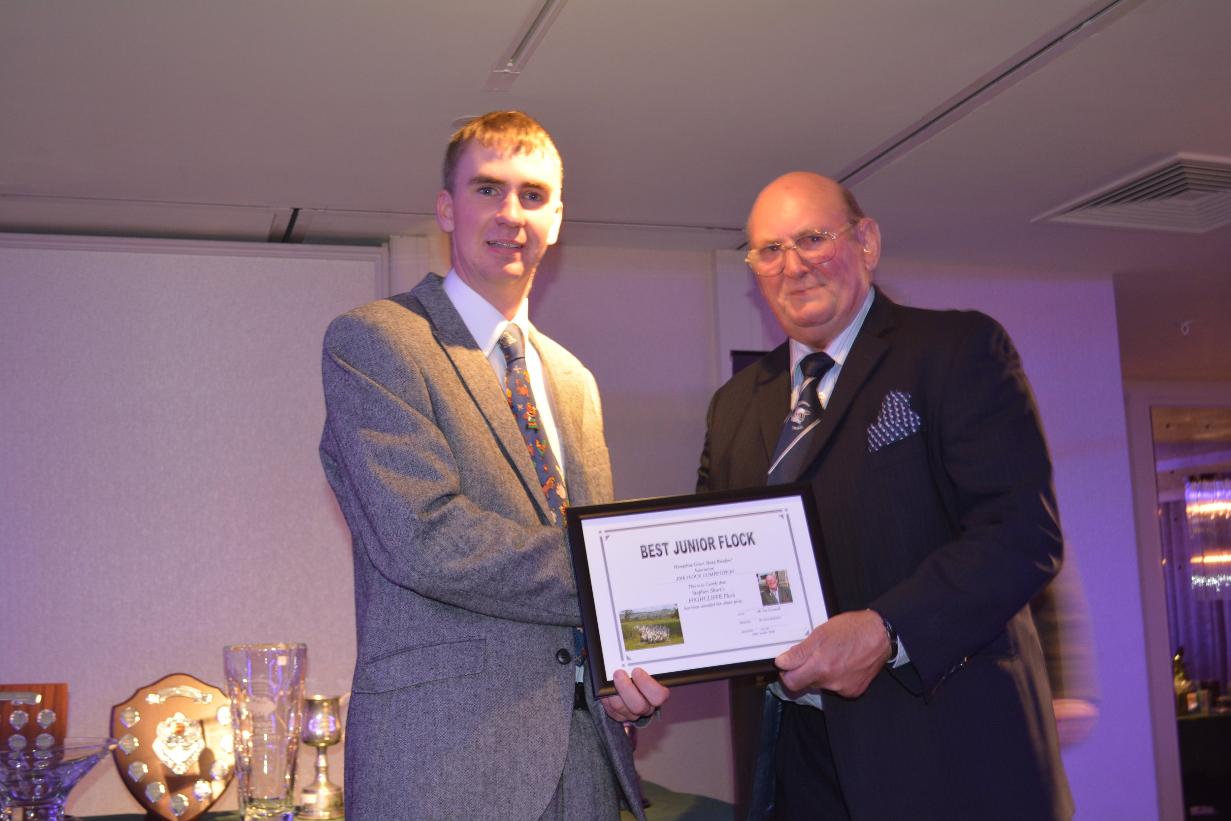 Stephen Short wins the Best Junior prize with his HIGHCLIFFE Flock
