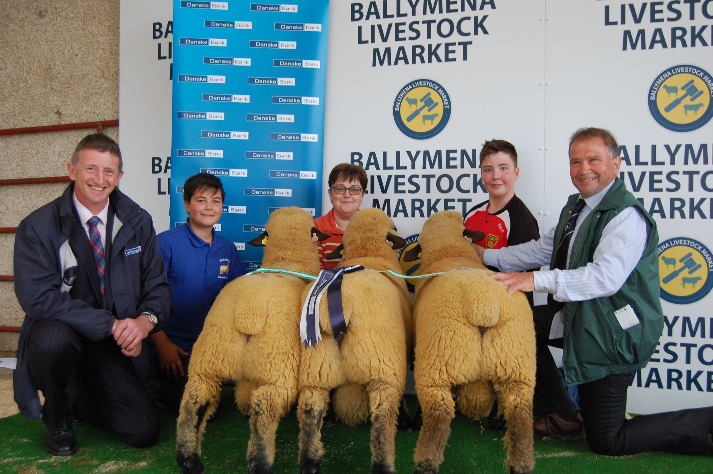 Reserve Champion, Group Of Three, BALLYCREELLY