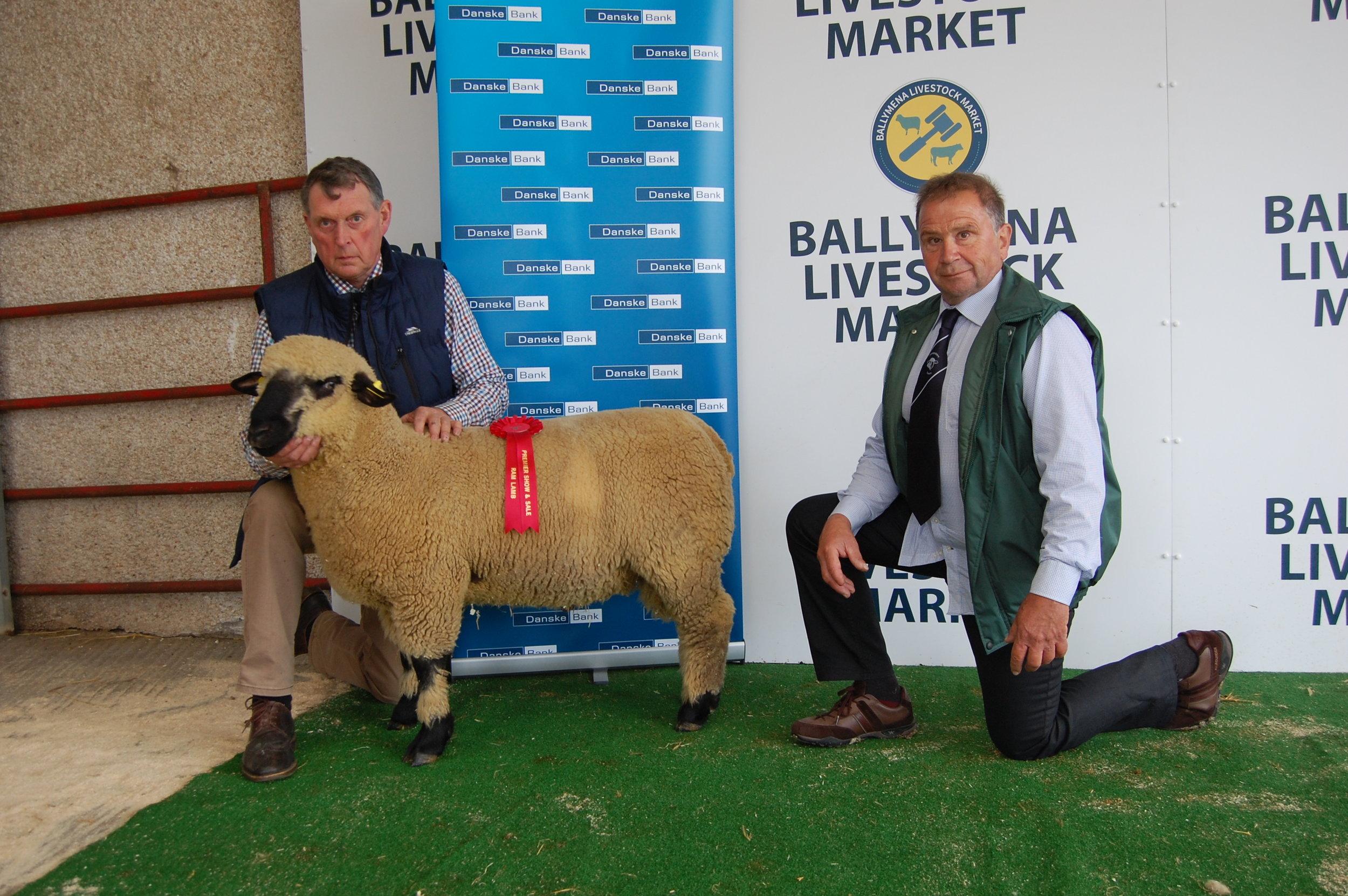 1st Ram Lamb, MOYBRICK