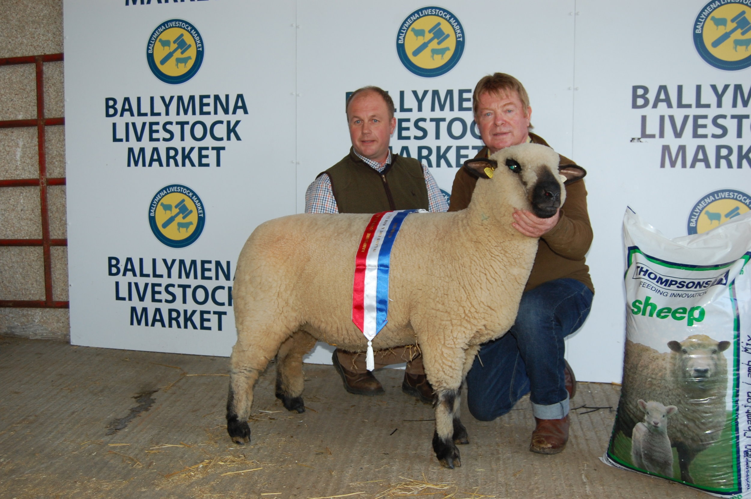 Kevin McCarthy with his Champion  Shearling Ewe.JPG