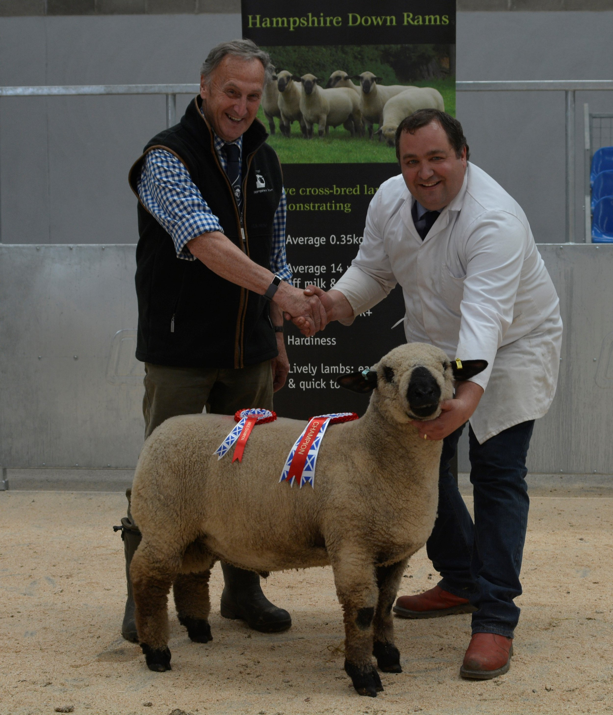HDSBA President Roy McFarlane, sponsor of the ram lamb class presents the prize to the overall champion and top price ram lamb from R A Rundle, Treworthal. Selling for 1100 gns to Stuart & Alison Moore, Balhall Flock