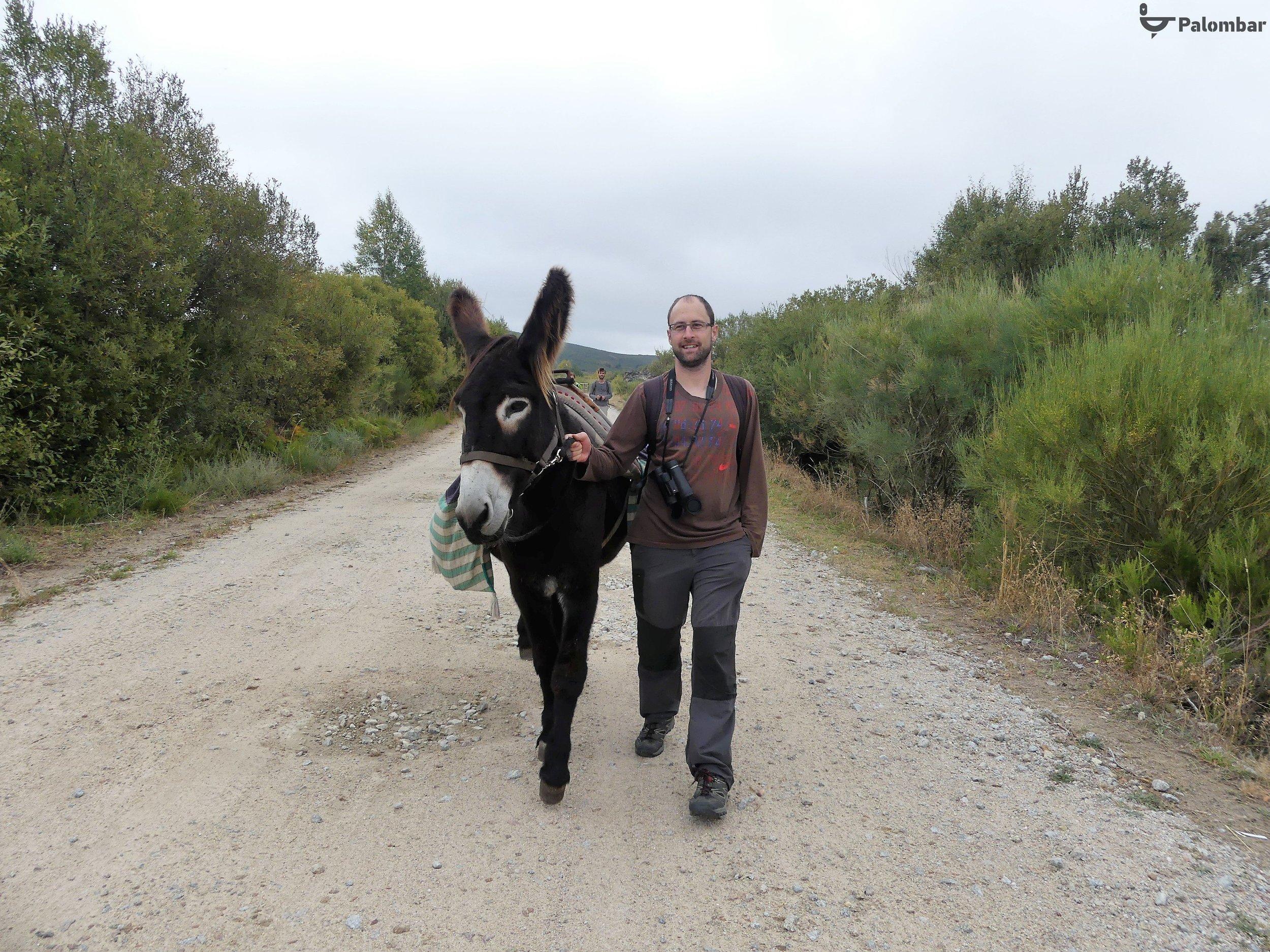 Na companhia de um burro mirandês | 13 de outubro de 2018
