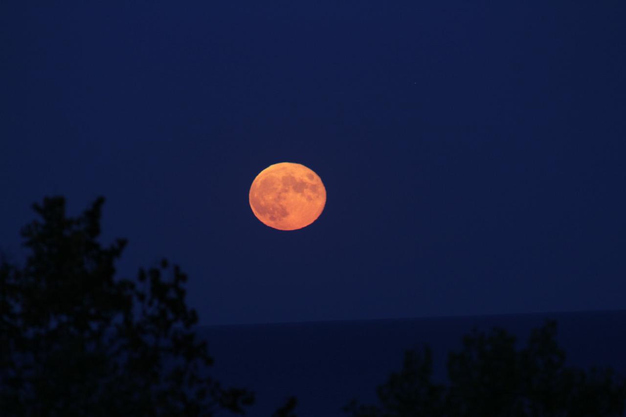 Tonight's moonrise over Lake Michigan