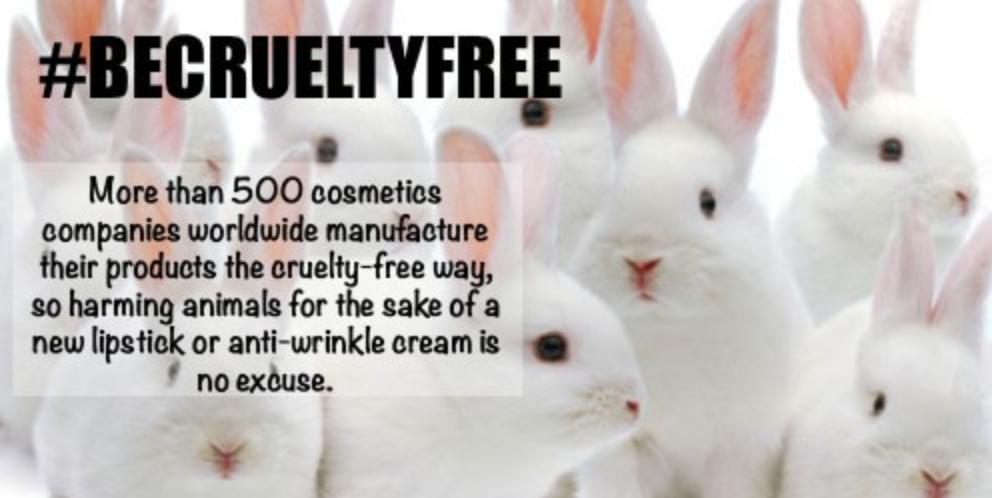 http://www.crueltyfreekitty.com/list-of-cruelty-free-brands/