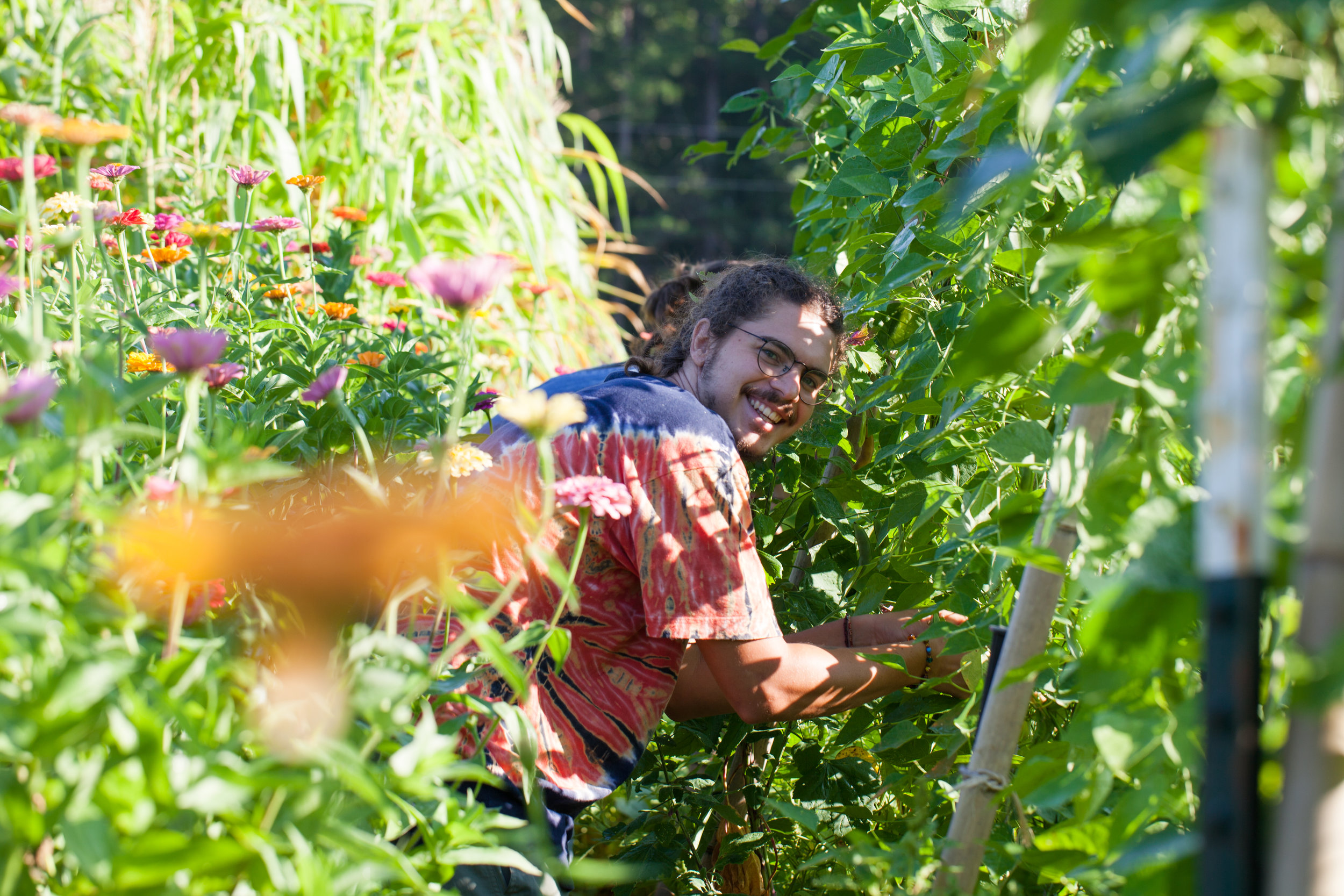 the-eco-institute-chapel-hill-nc-rising-earth-permaculture-environmental-education-gap-year-andres_zinnias_flowers_beans_harvesting.jpg