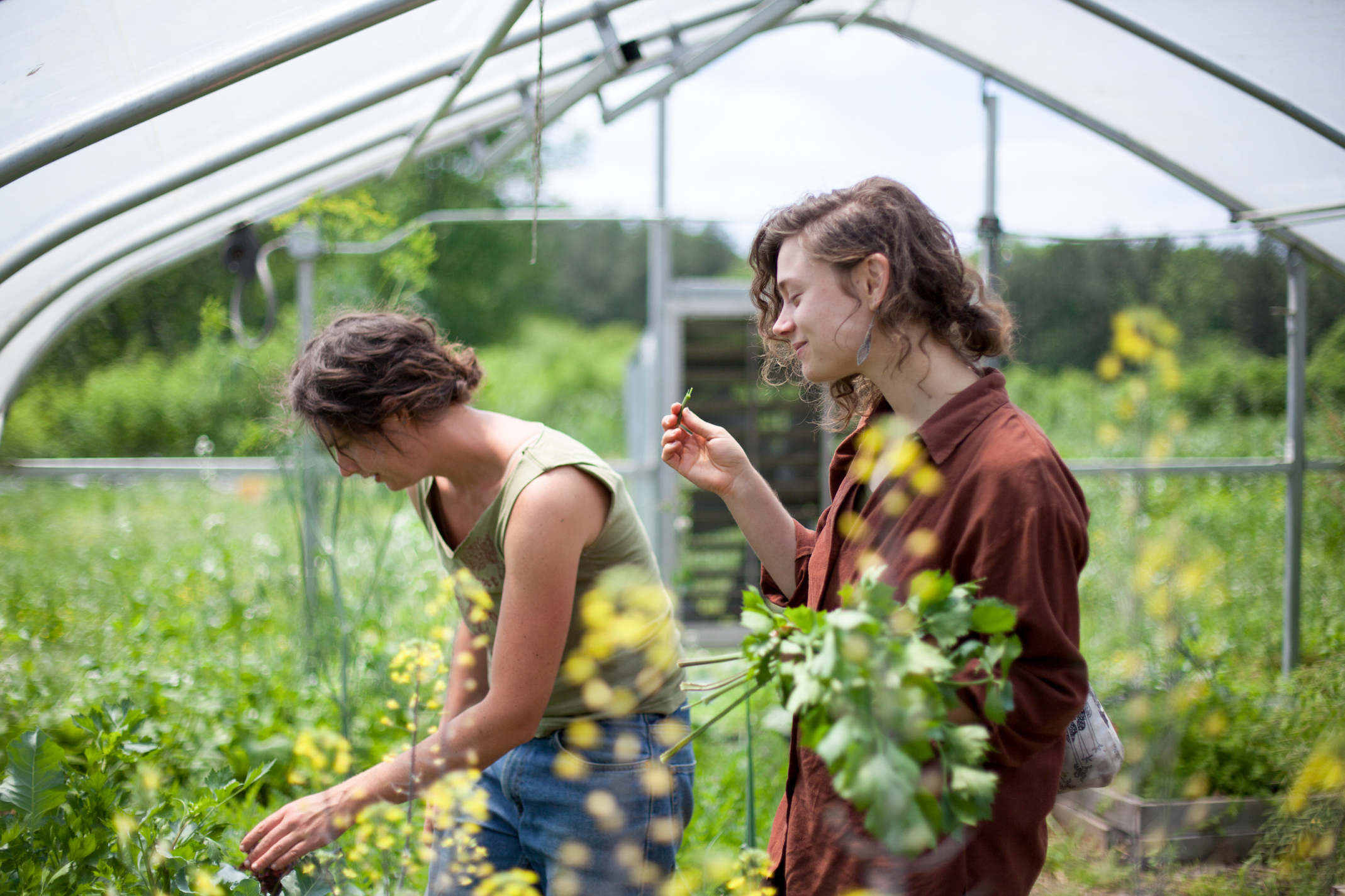 the-eco-institute-chapel-hill-nc-rising-earth-permaculture-environmental-education-gap-year-women-nature.jpg