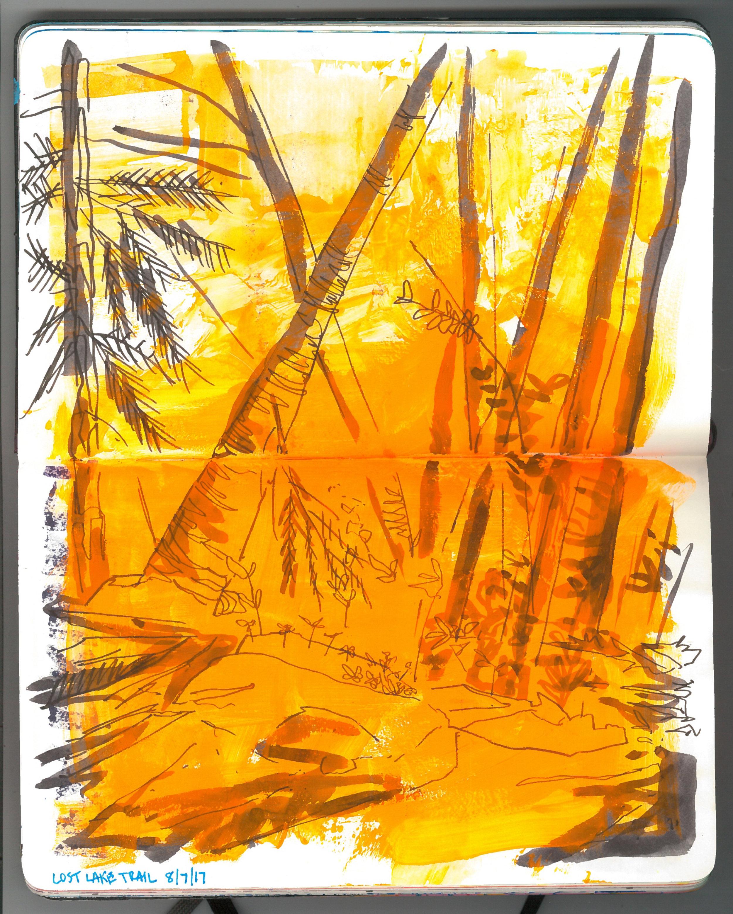 lost lake trail sketch.jpg