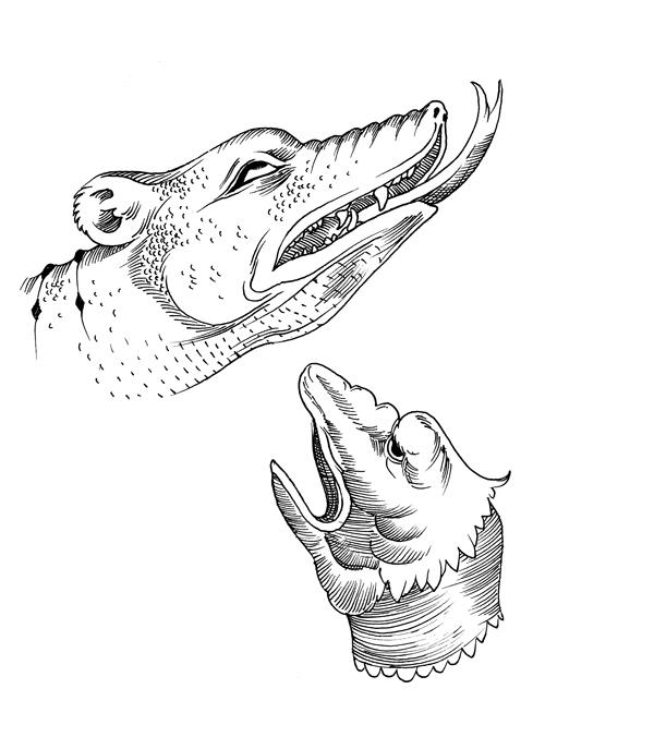 dragon-sketches-600.jpg