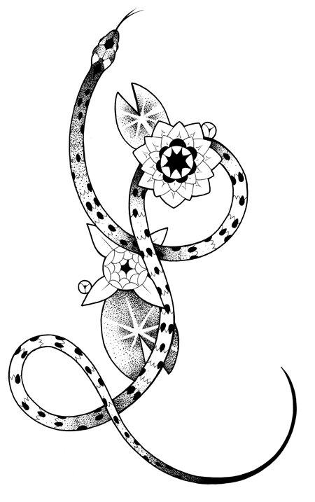 lotus-snake-450.jpg