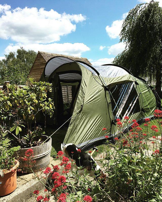 Backyard camping today 🏕  #englishsummer #gardencamping #bigtent #campingwithkids #summerfun☀️ #americansabroad
