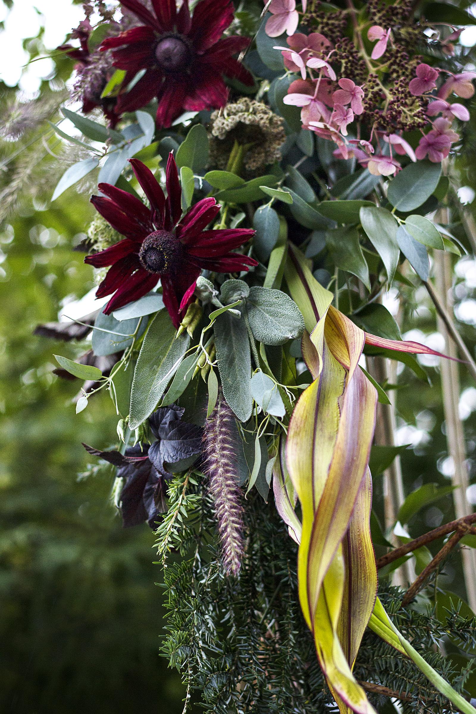 reduced_ss_fall_botanicals_arbor_pee_gee_rudbeckia_grass.jpg