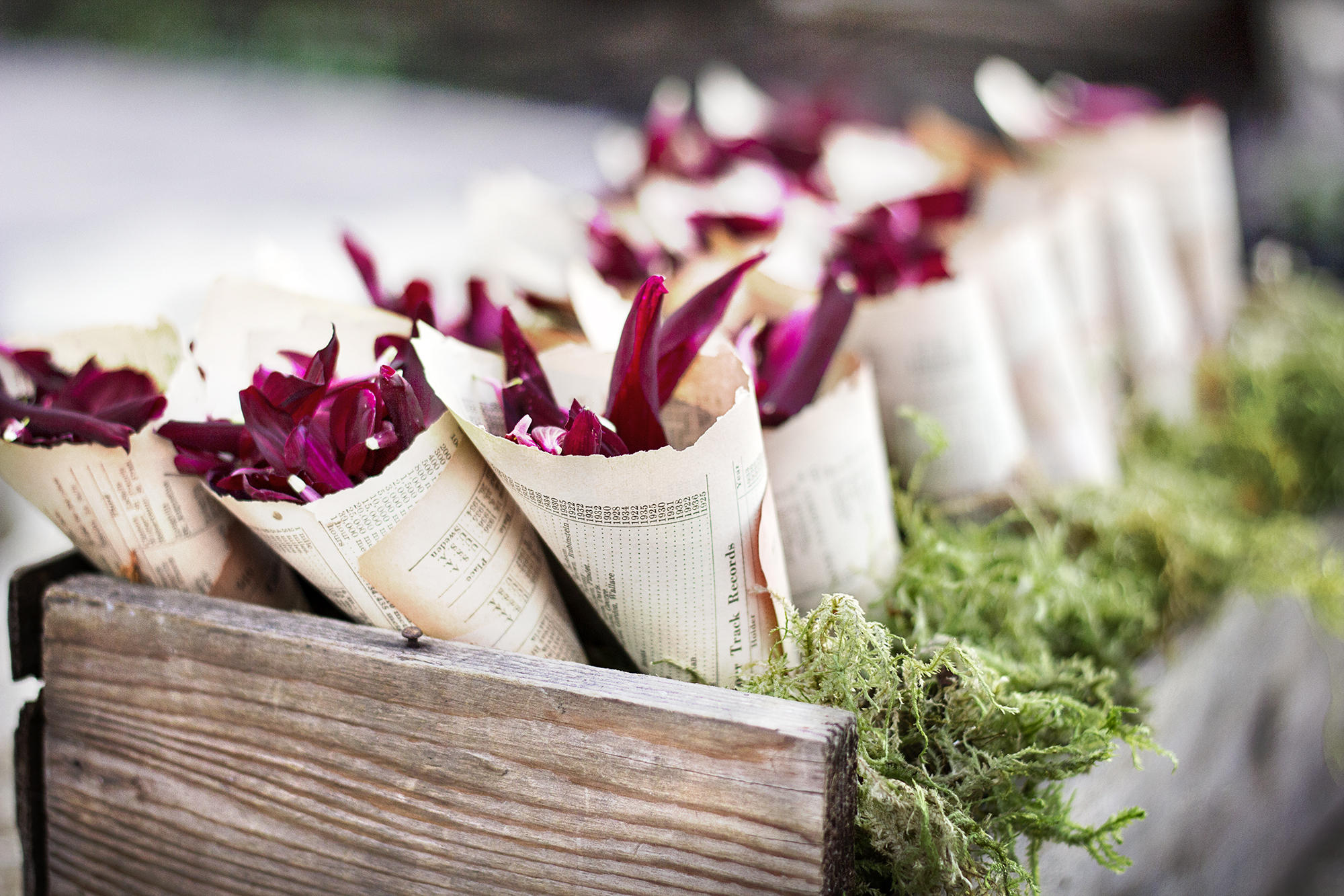 reduced_ss_pc_events_petals_paper_cones_wedding_confetti.jpg