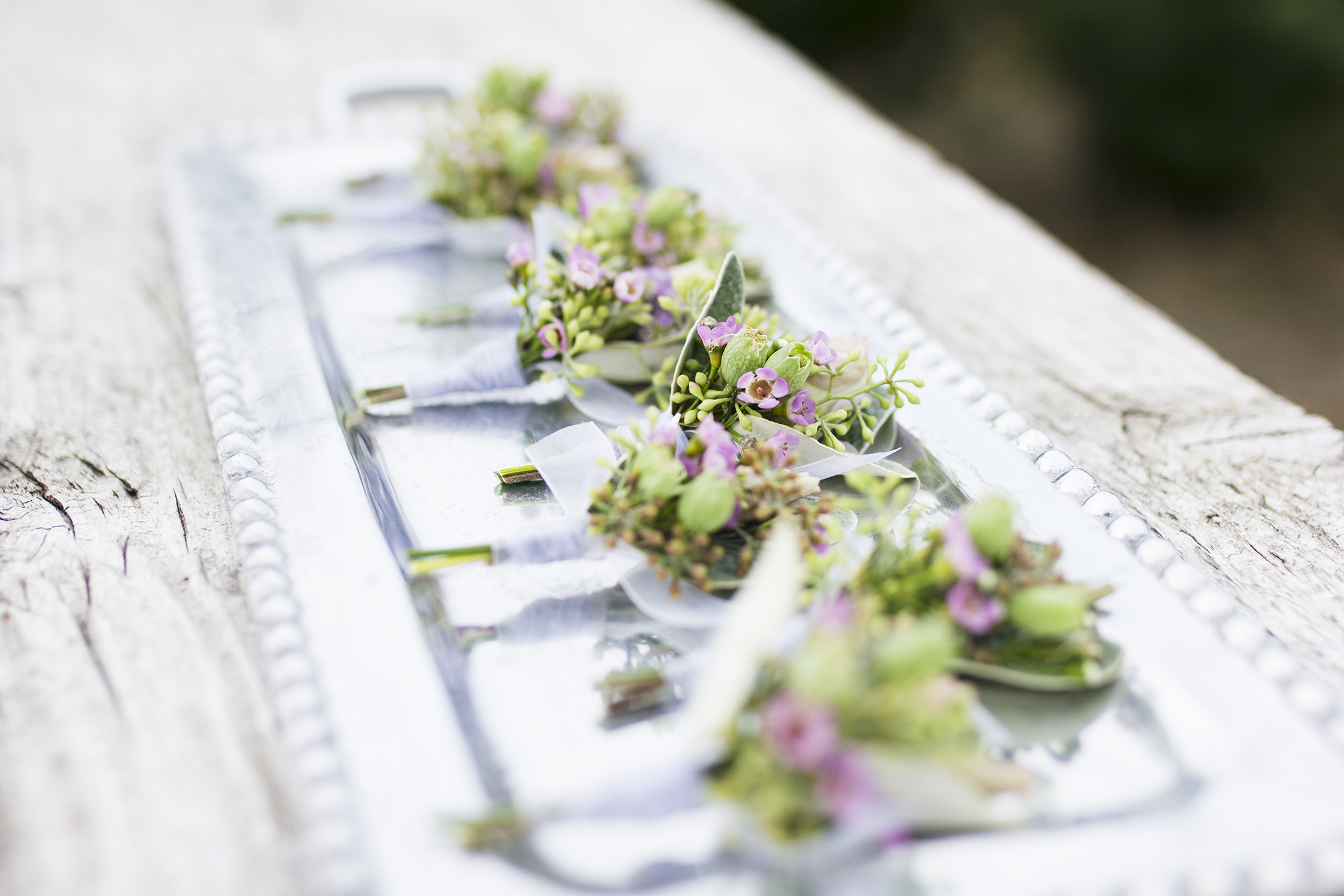 reduced_ss_boutonnieres_emma_wedding_wax_flower_silene_.jpg