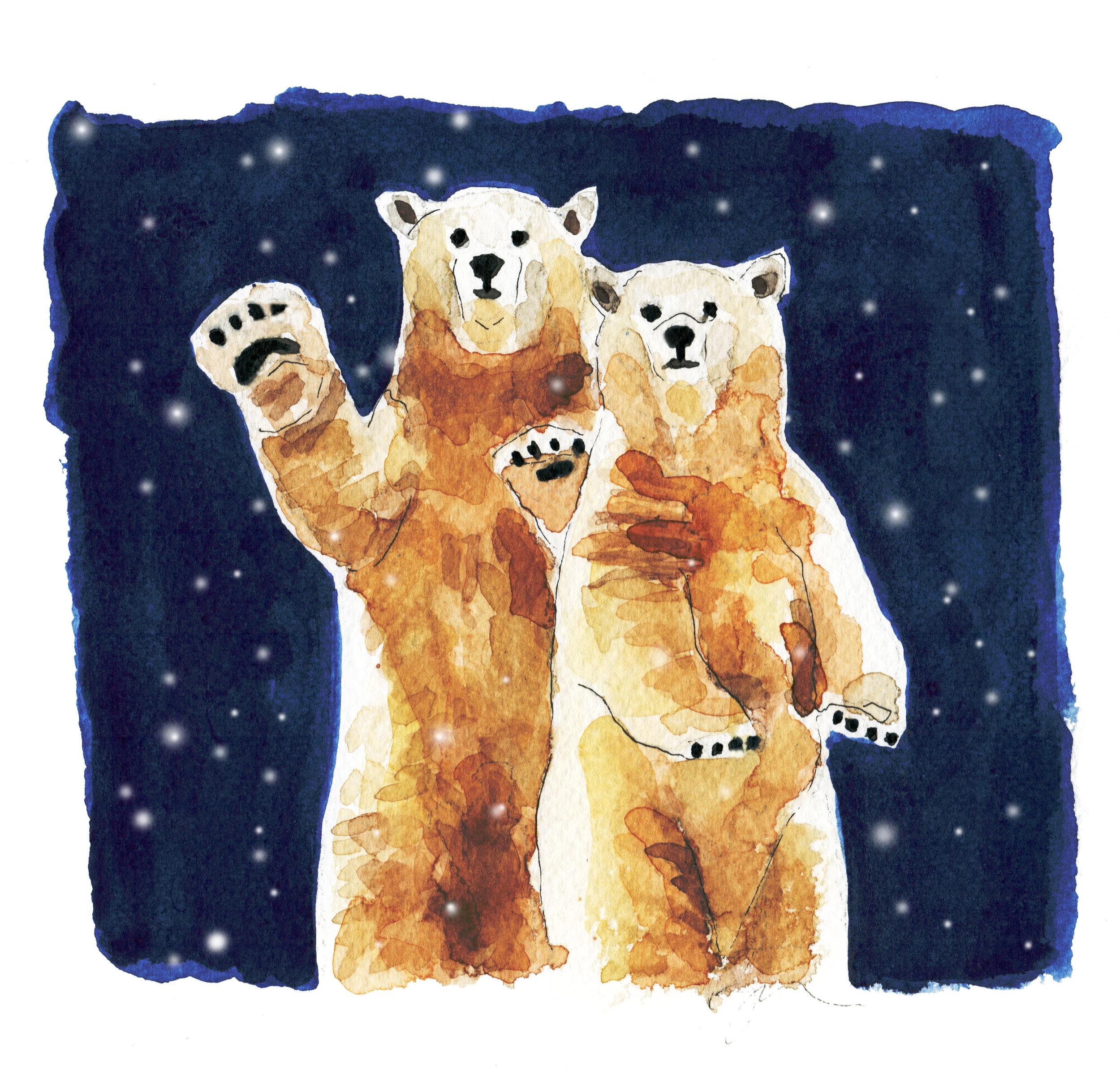 polar bears_midnightsnow.jpg