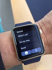 The Apple Watch give its users an easy way to reply to messages.