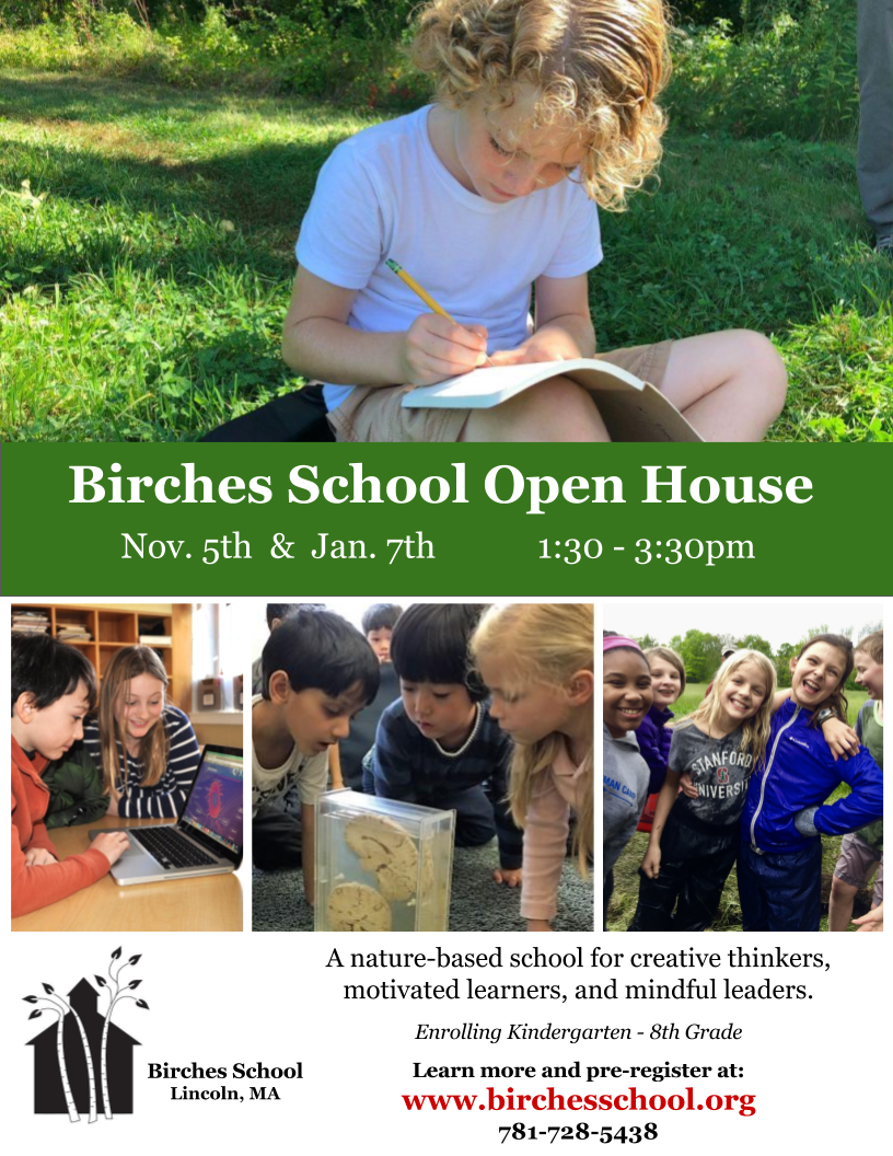 Birches School Open House Flyer 2017.png