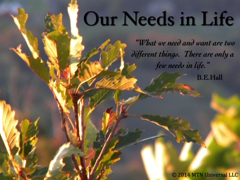 Our-Needs-in-Life.001.jpg
