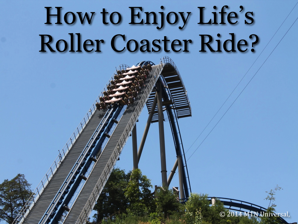 How-to-Enjoy-Life's-Roller-Coaster-Ride.0011.jpg