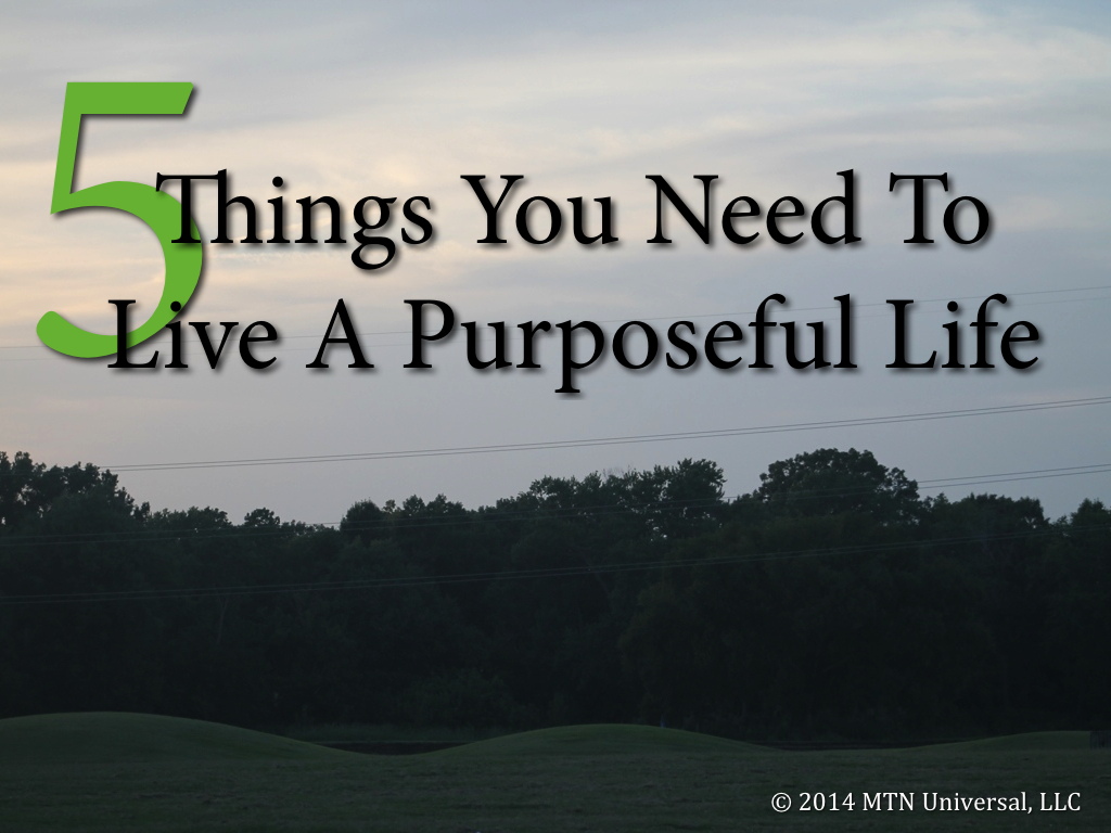 5-Things-You-Need-To-Live-A-Purposeful-Life.001.jpg