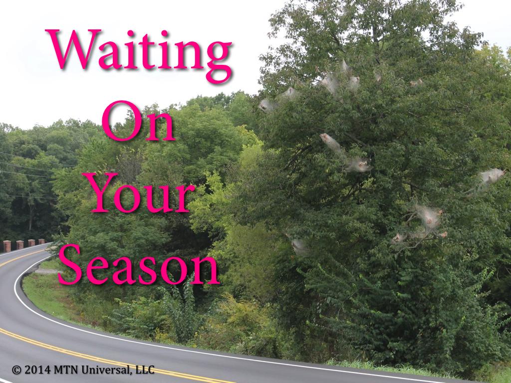 Waiting-On-Your-Season.001.jpg