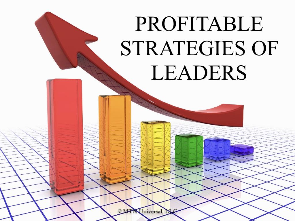 PROFITABLE STRATEGIES OF LEADERS.001.jpeg