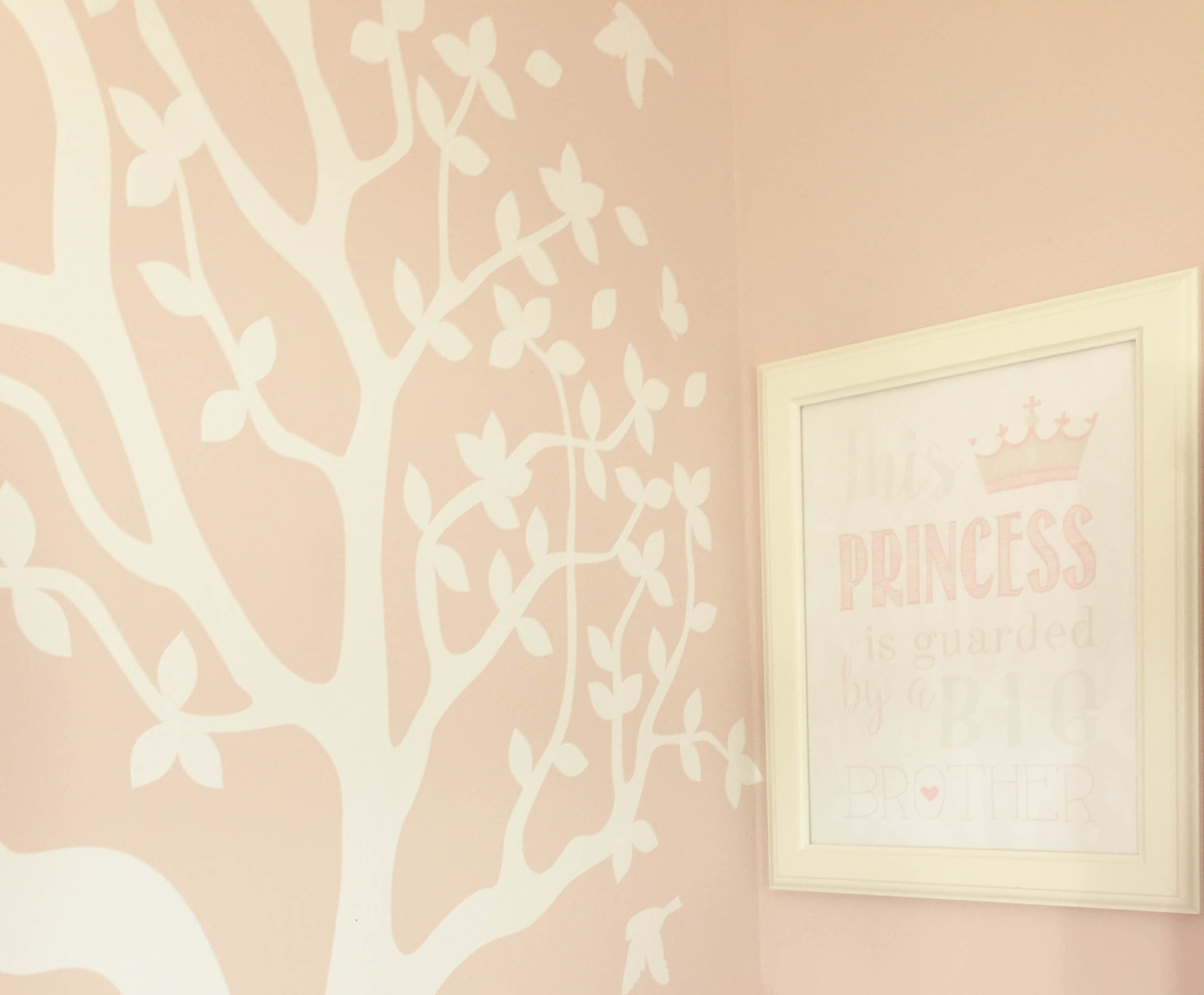 Girls bedroom Design - Ballsbridge