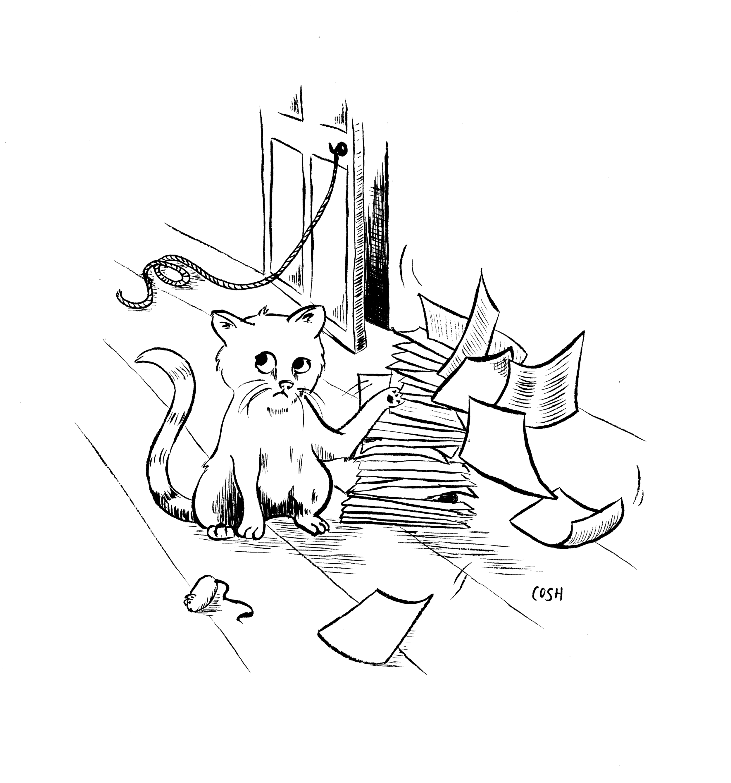 cat papers.png
