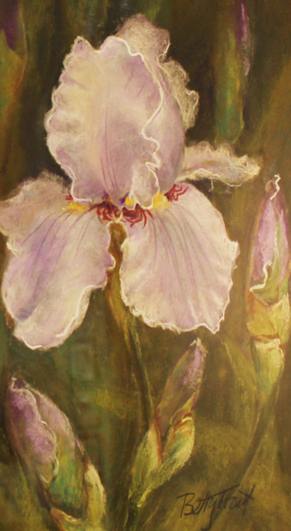 Iris By: Betty Trout