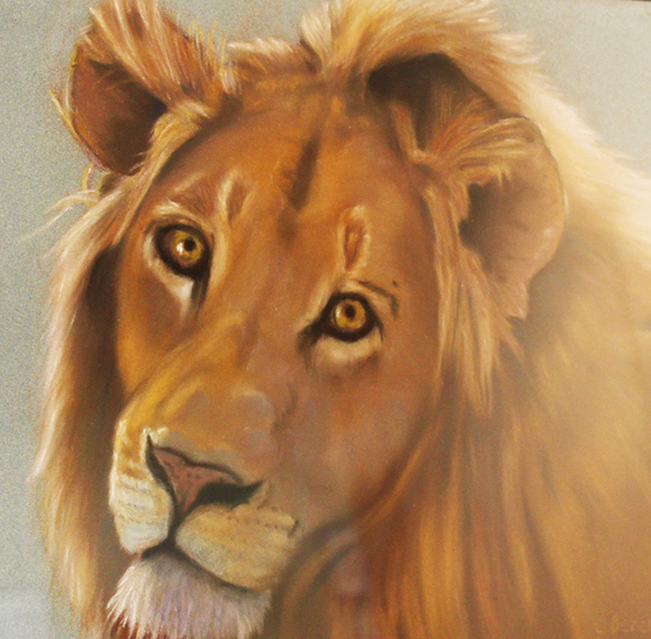 Lion By: Cindy Berceli