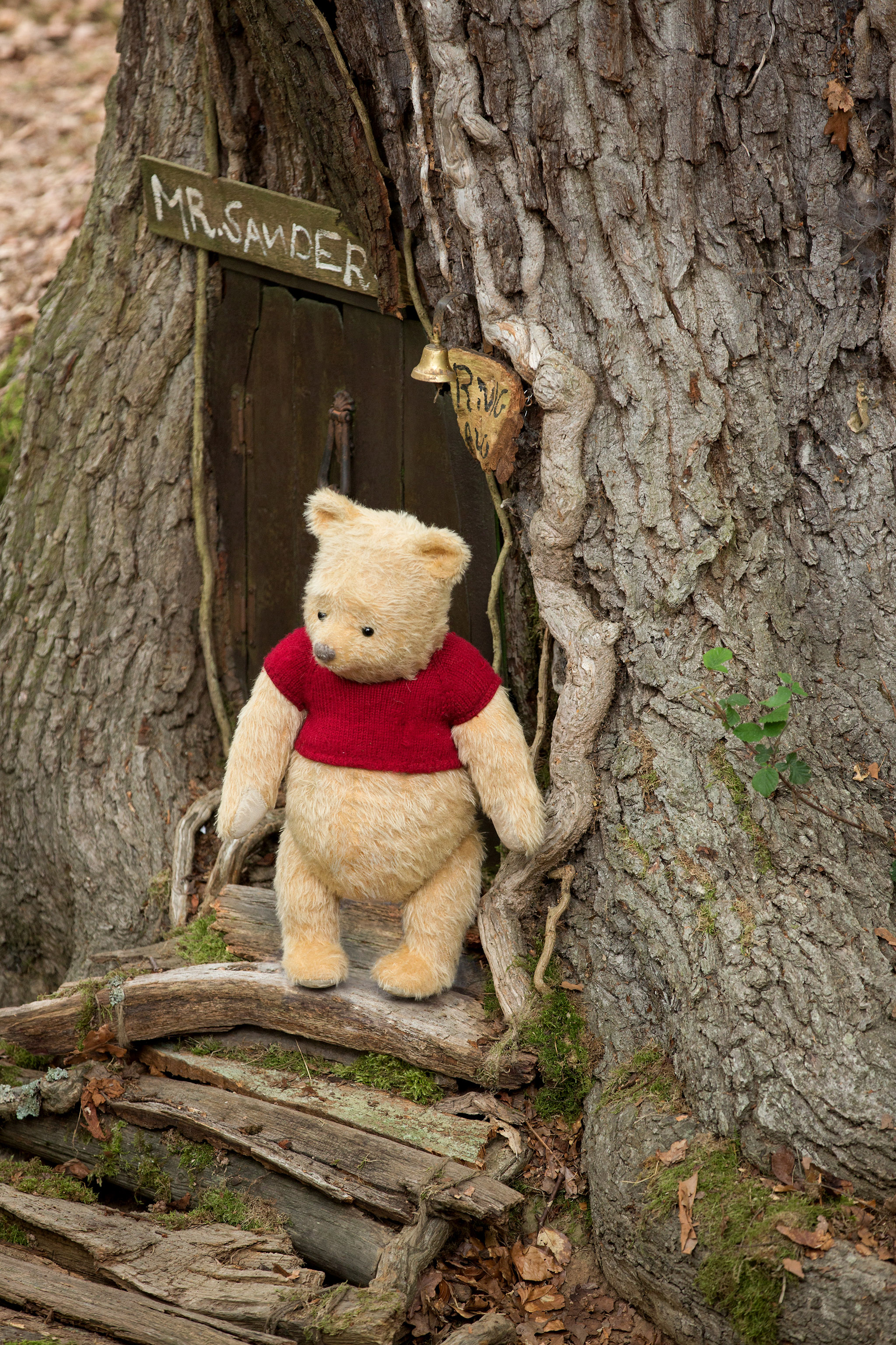 The enduring appeal ( and wisdom) of AA Milne's Winnie the Pooh. CREDIT: Disney