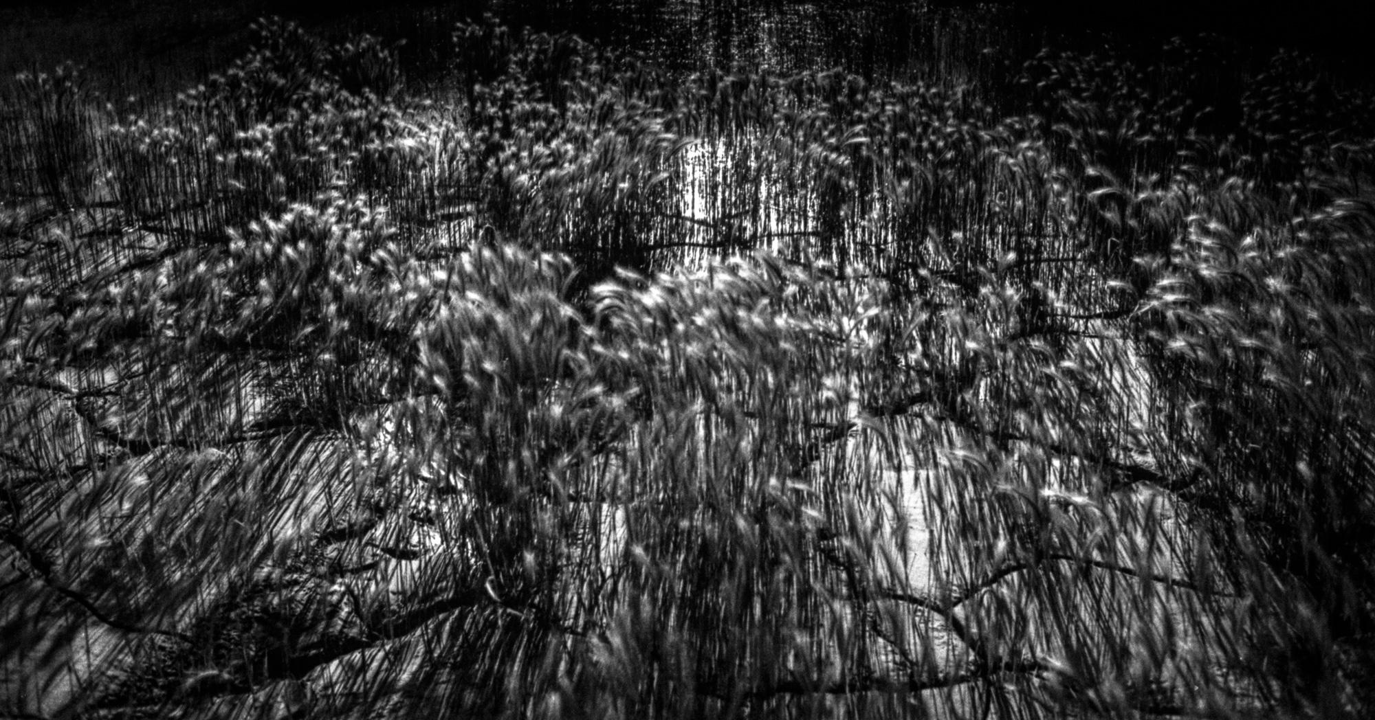 untitled-42.jpg