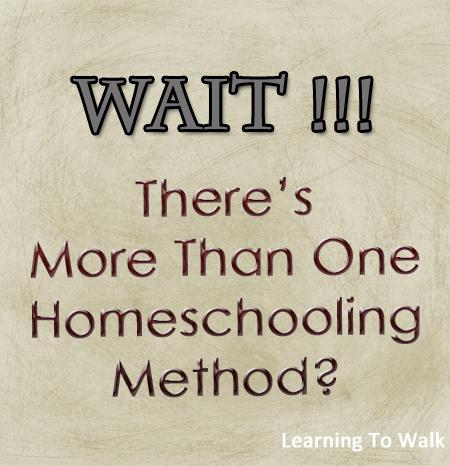 Wait-Theres-more-than-1-homeschool-method-.jpg