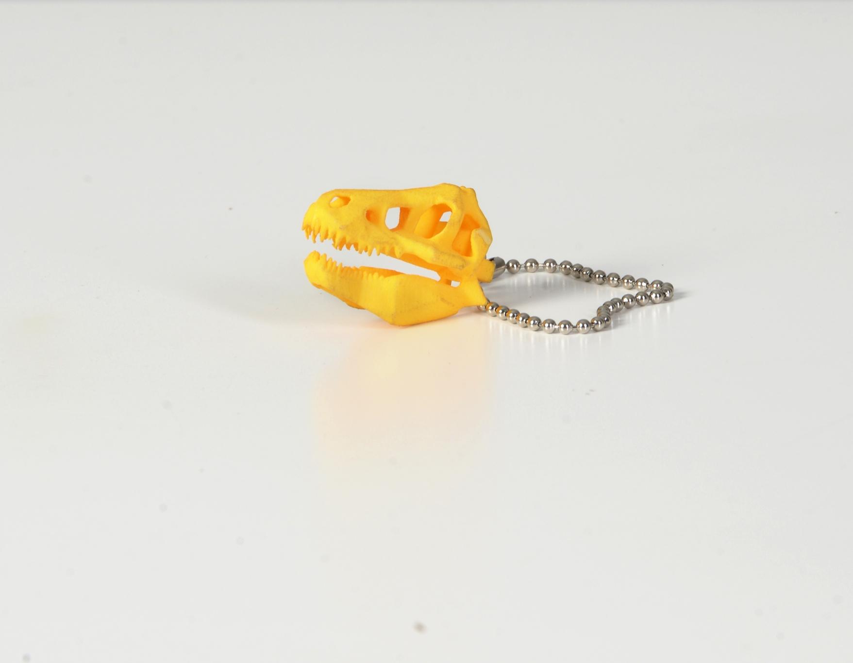 01 Heightened Sense Key Chains.jpg
