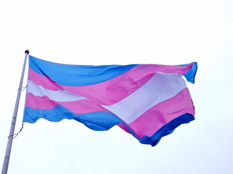 Trans-Flag-LGBT-Singapore-Wear-Your-Voice-Article-800x600.jpg