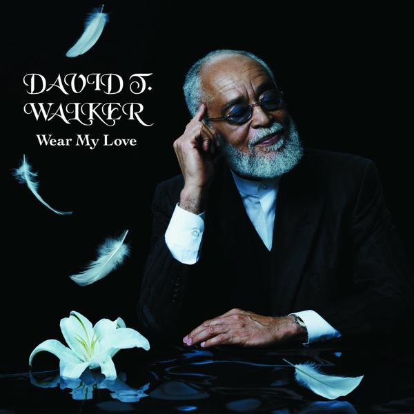 DAVID T WALKER WEAR MY LOVE
