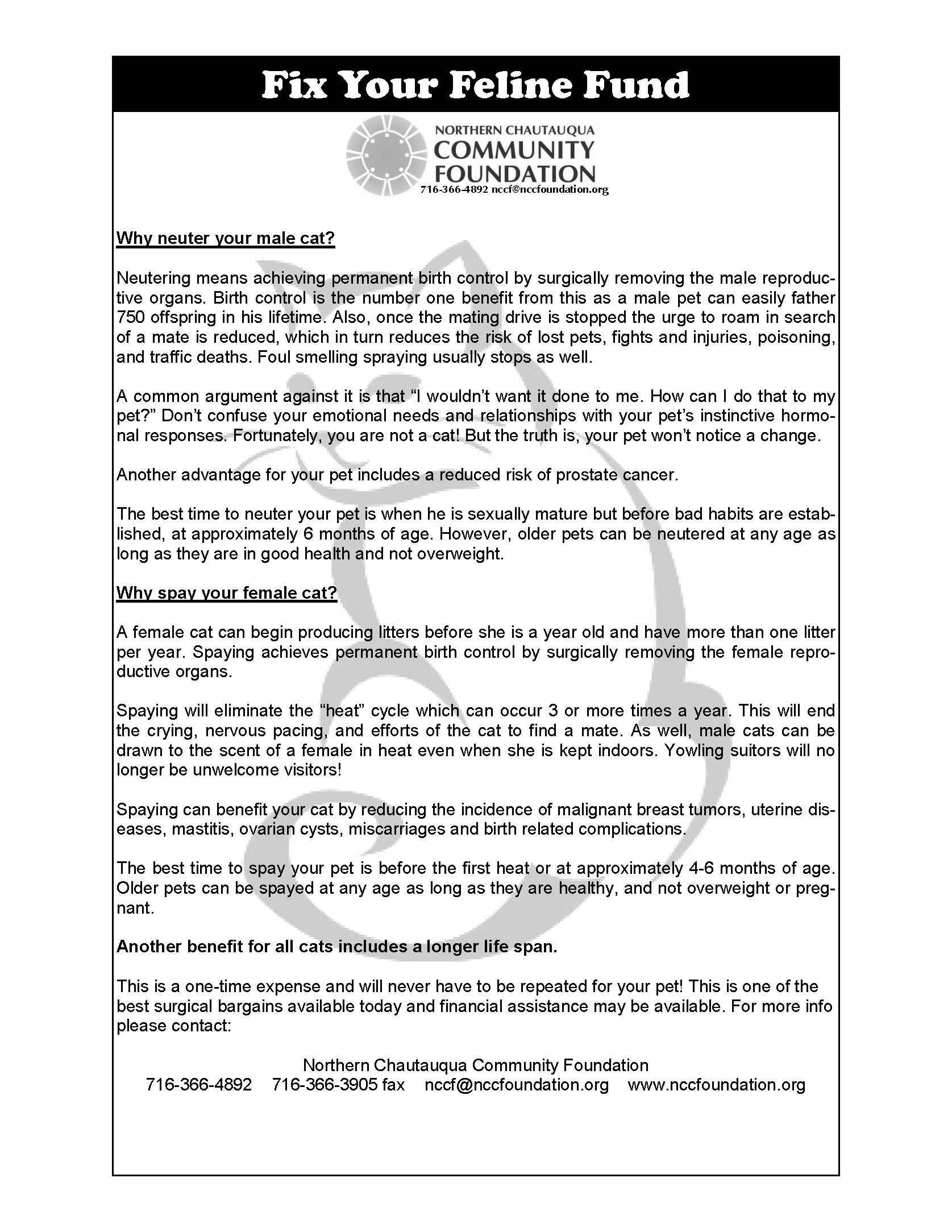 flyer 8 2013_Page_1.jpg