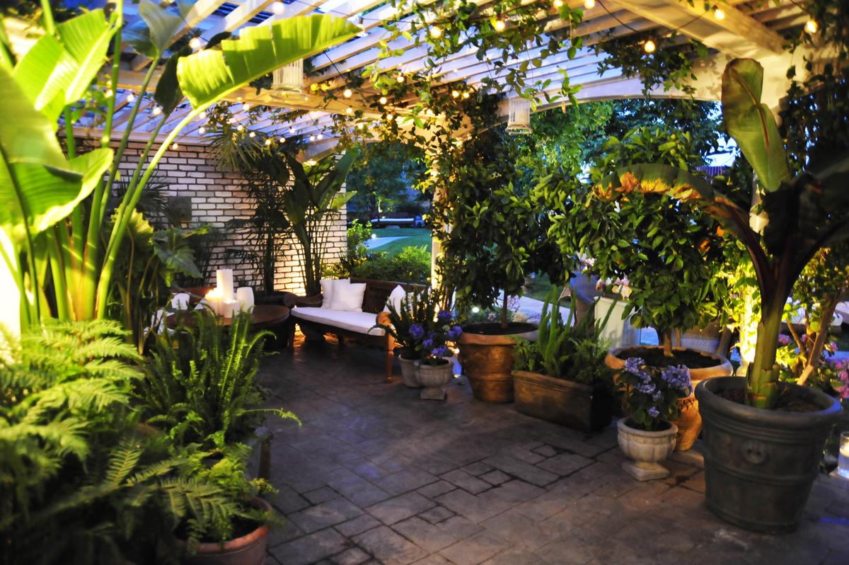 003.italian lighting, lush outdoor lounge setting, rented trees, backyard lounge.jpg