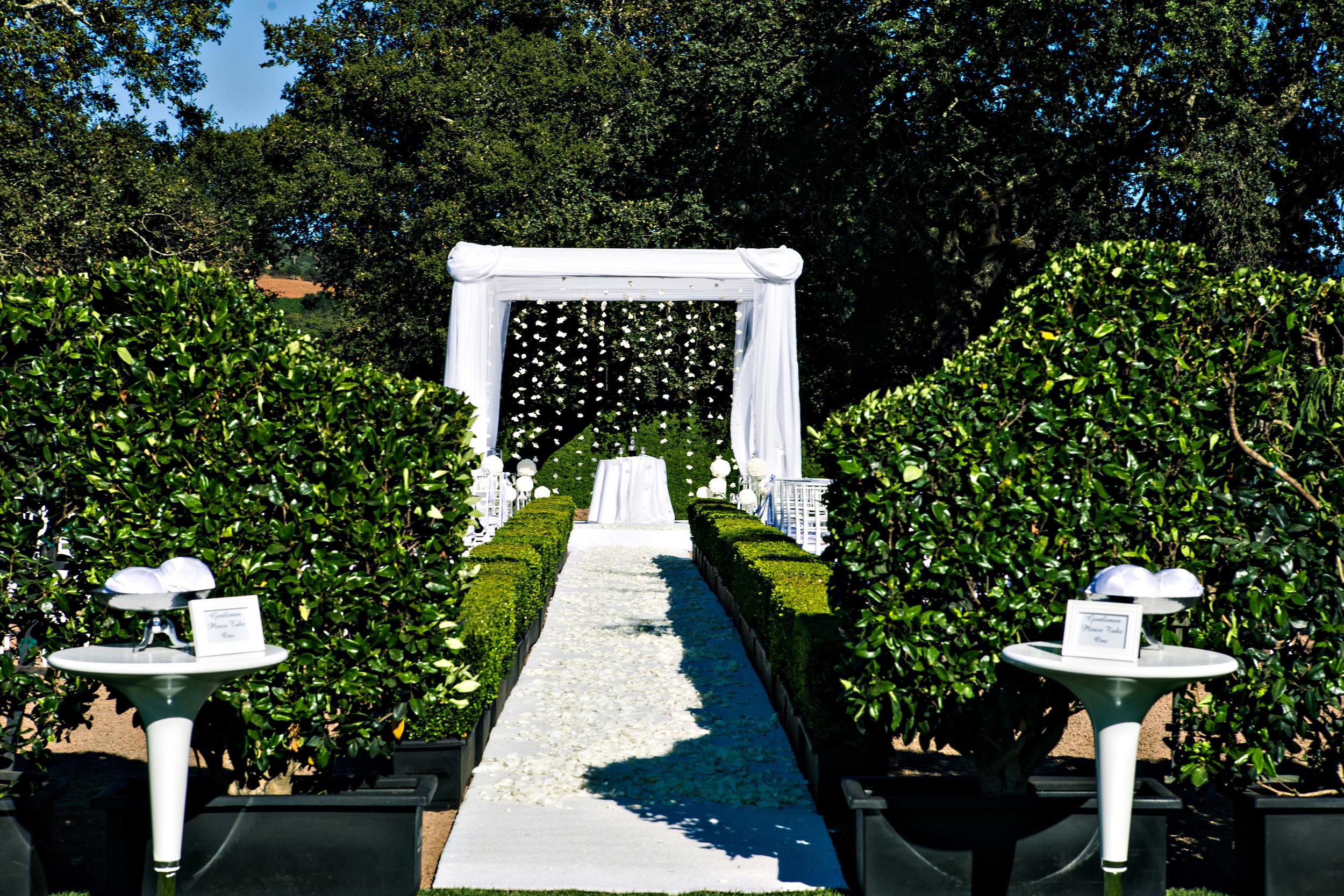03. chuppah, hanging flowers, hanging gardenias, napa wedding, vineyard wedding.jpg