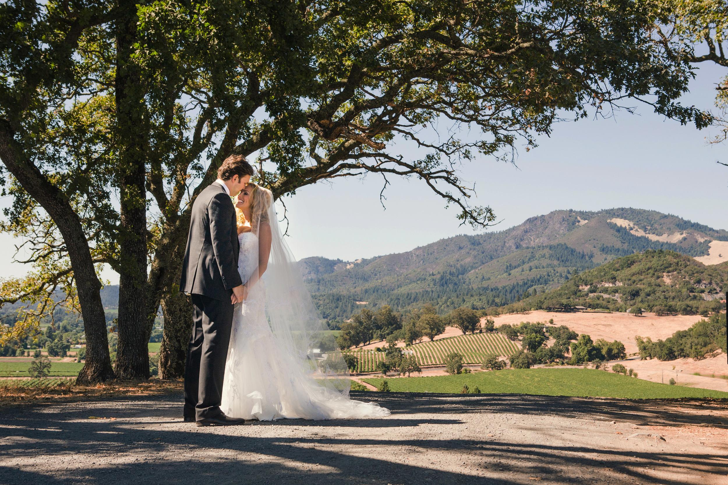 11. napa wedding, vineyard ceremony, bride & groom with view, artsy bride & groom photo.jpg