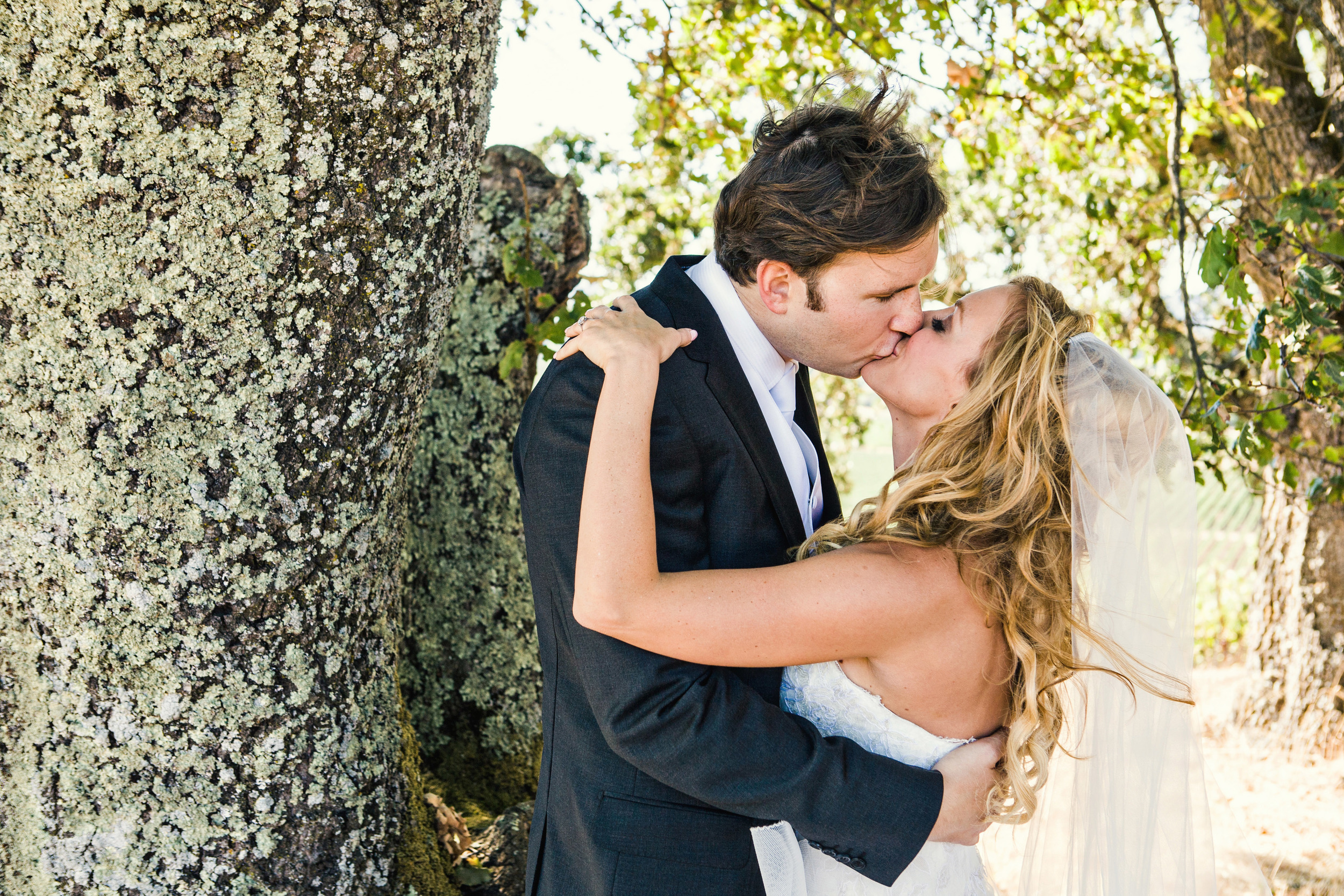 13. Bride & groom kissing in a tree, napa wedding, vineyard ceremony.jpg