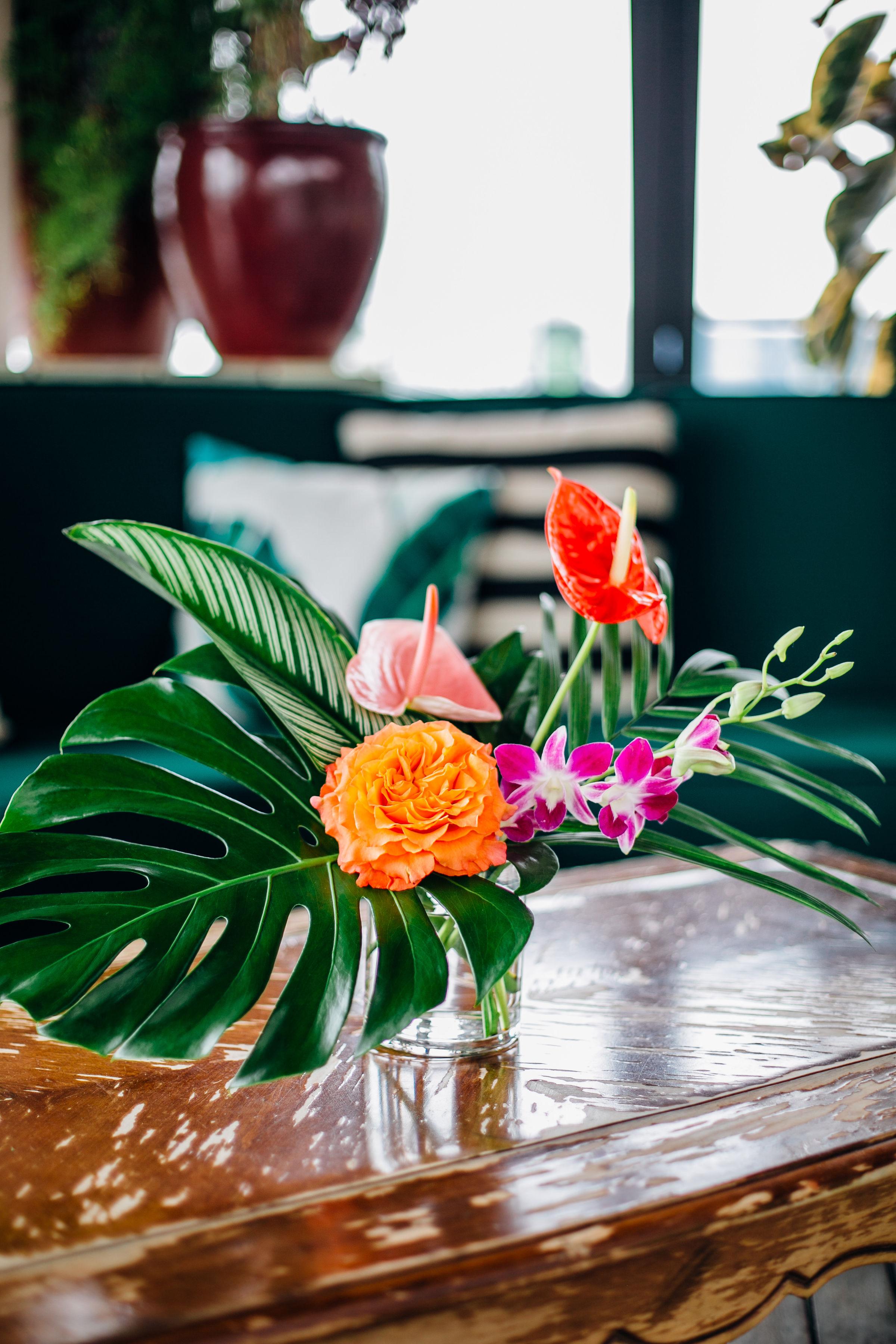 antherium tropicals.jpg