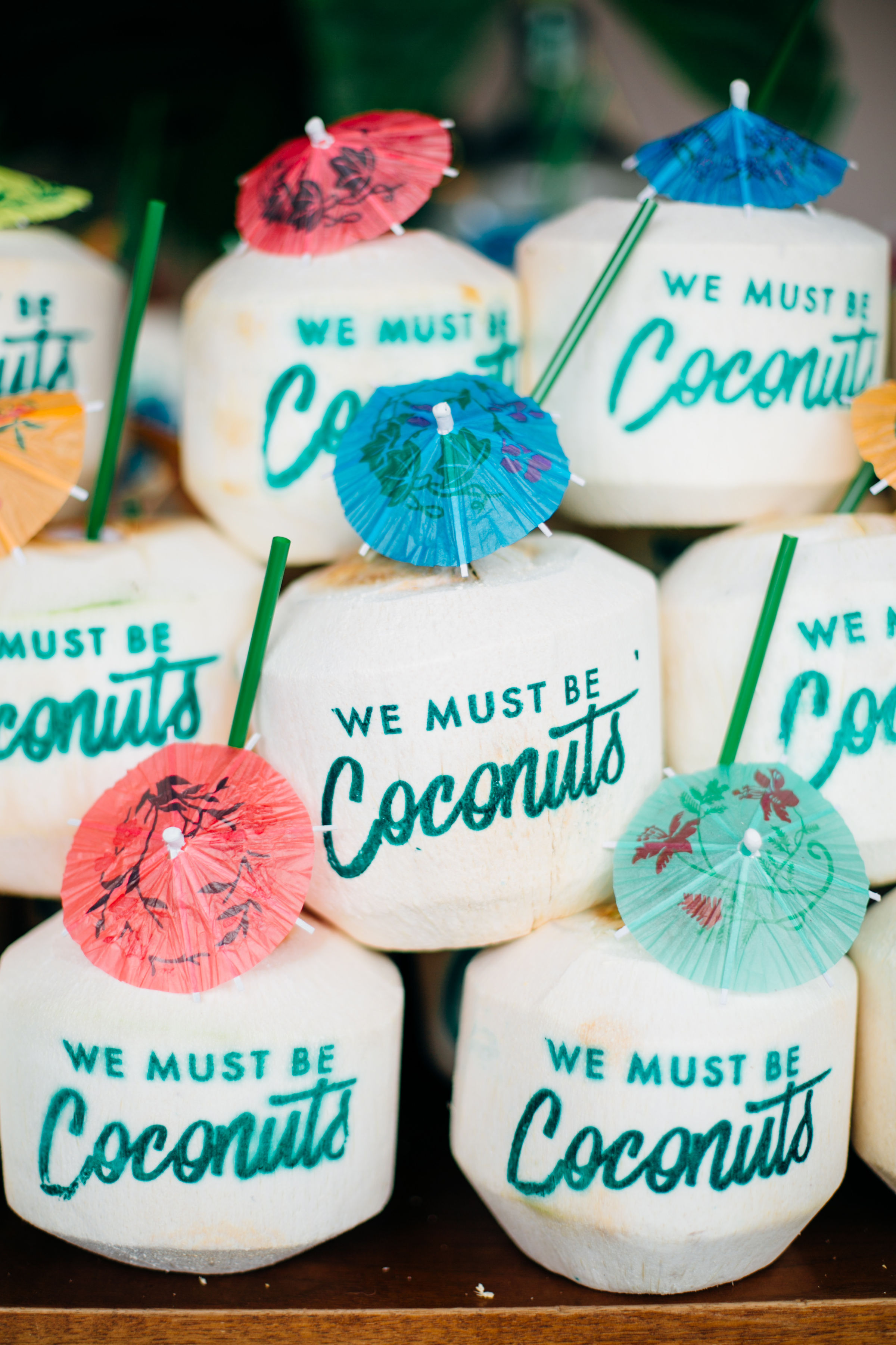 custom baby shower coconuts.jpg