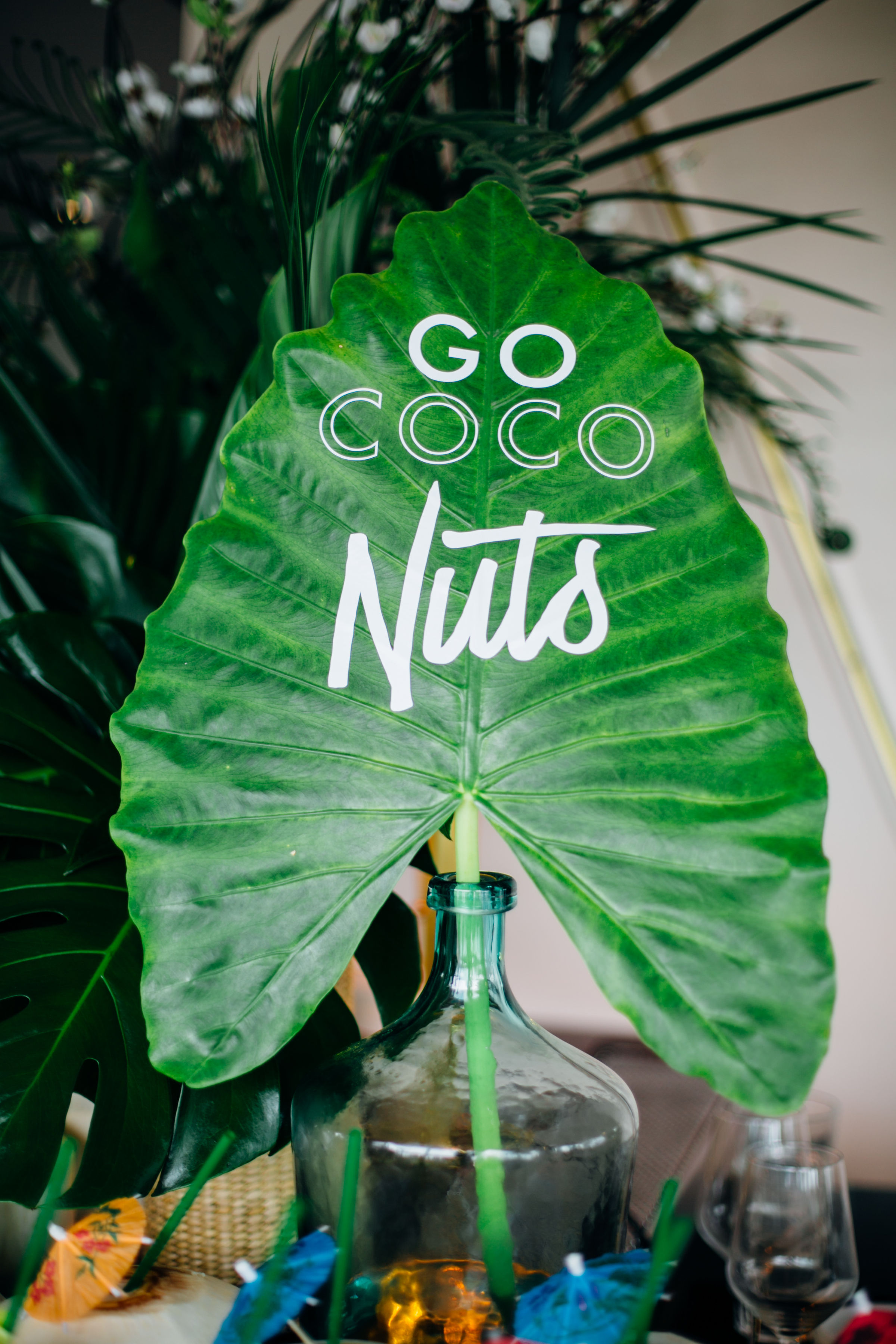 go coconuts sign.jpg