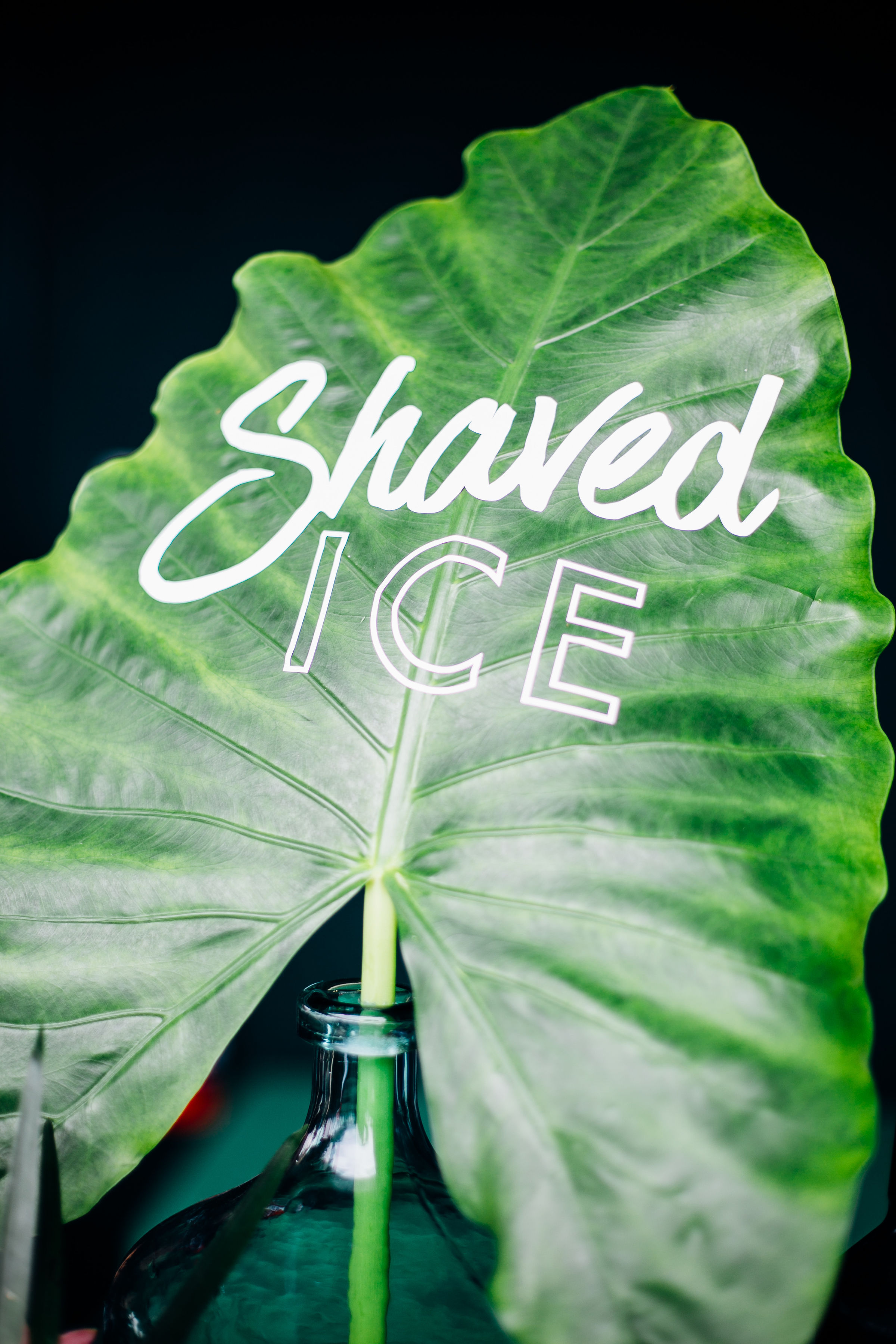 shaved ice decal.jpg