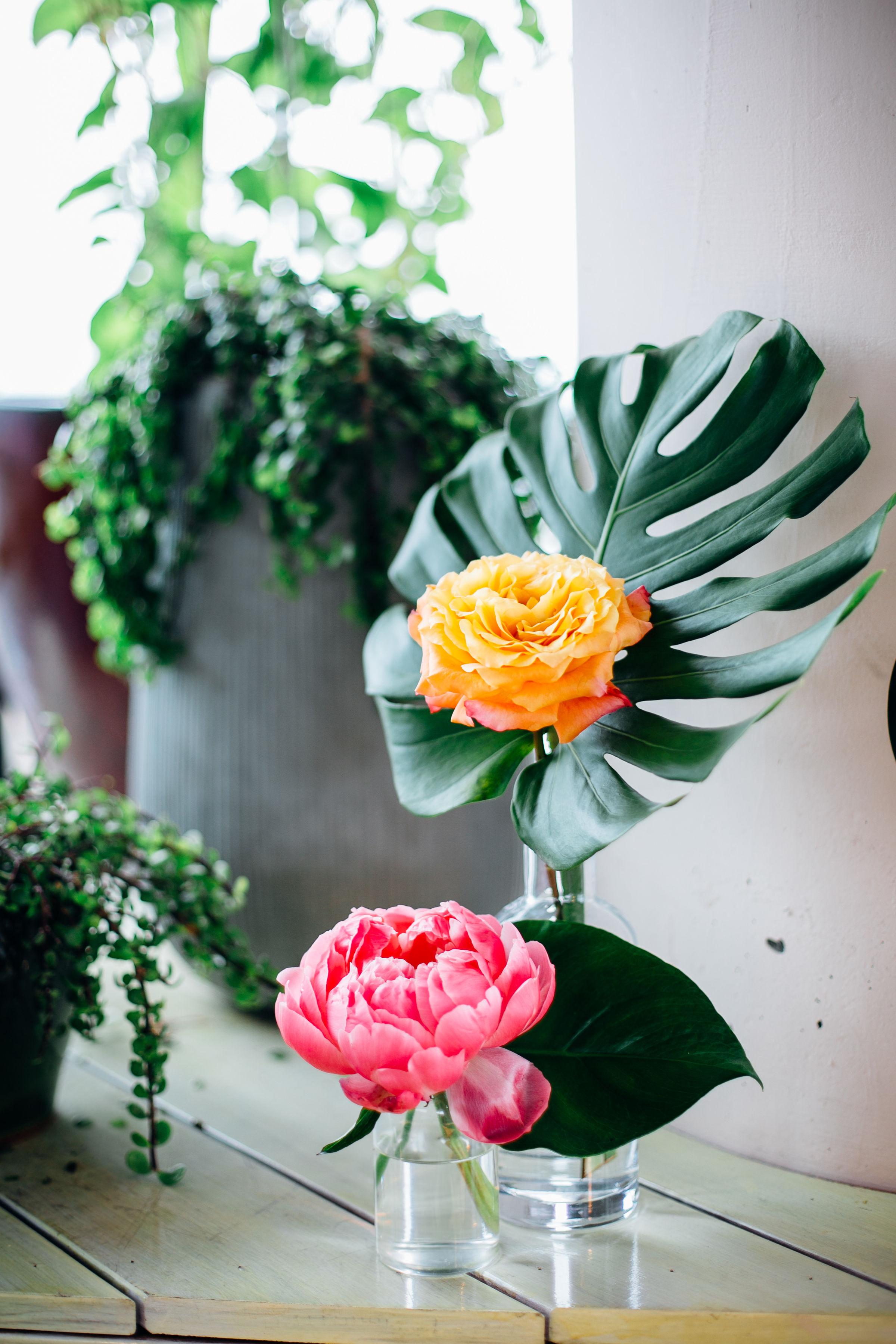tropical bright monstera floral.jpg