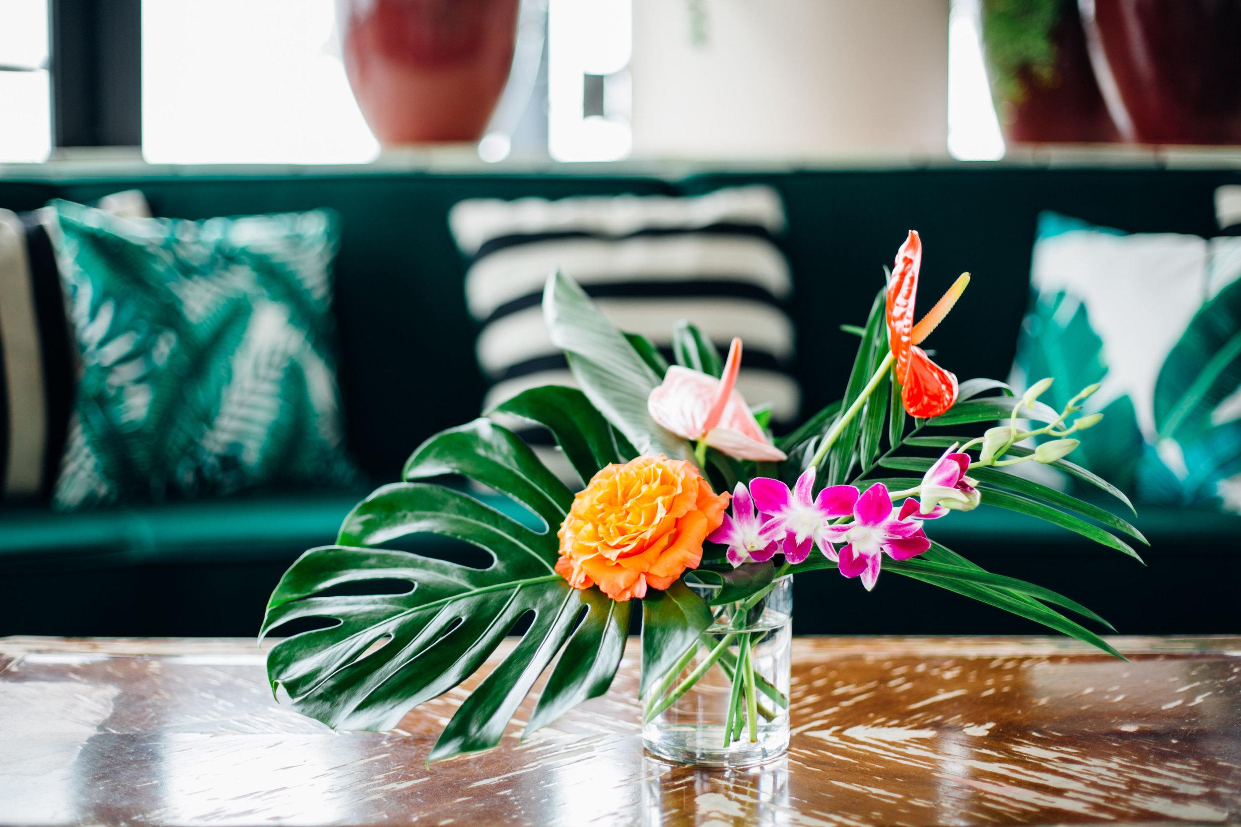 tropical lounge.jpg