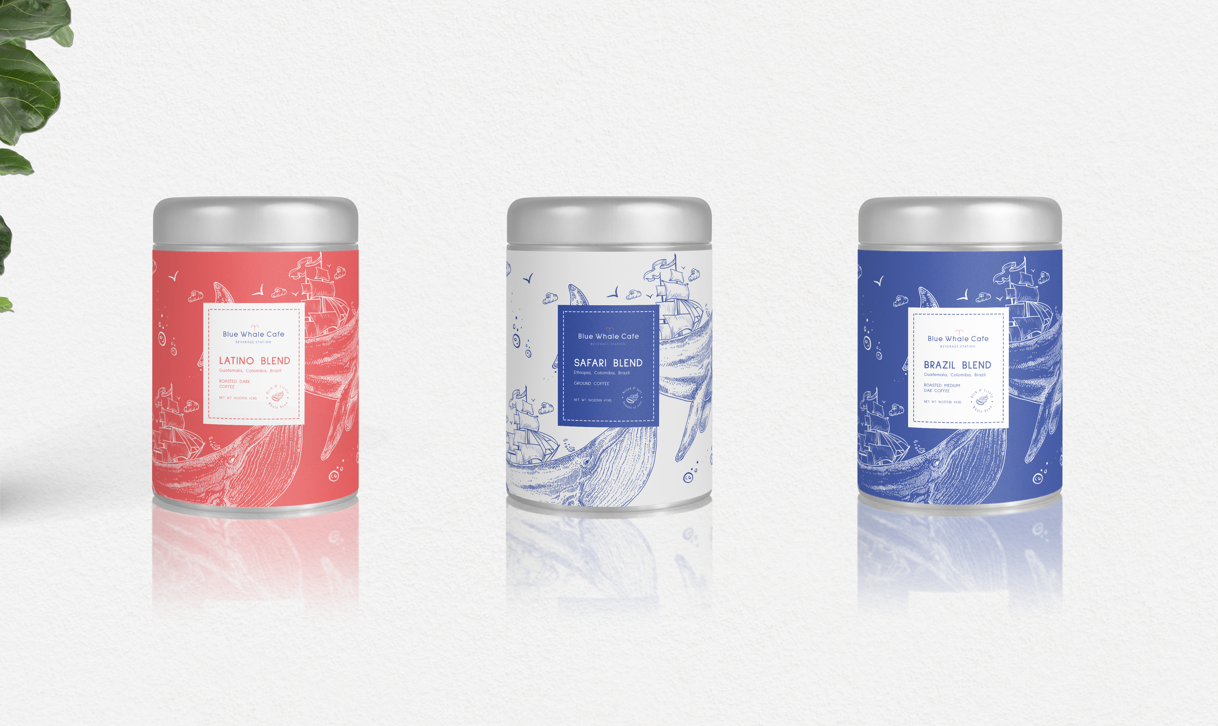 Blue Whale Packaging MockUp.png