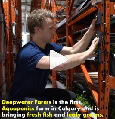 Alberta Venture, 2019