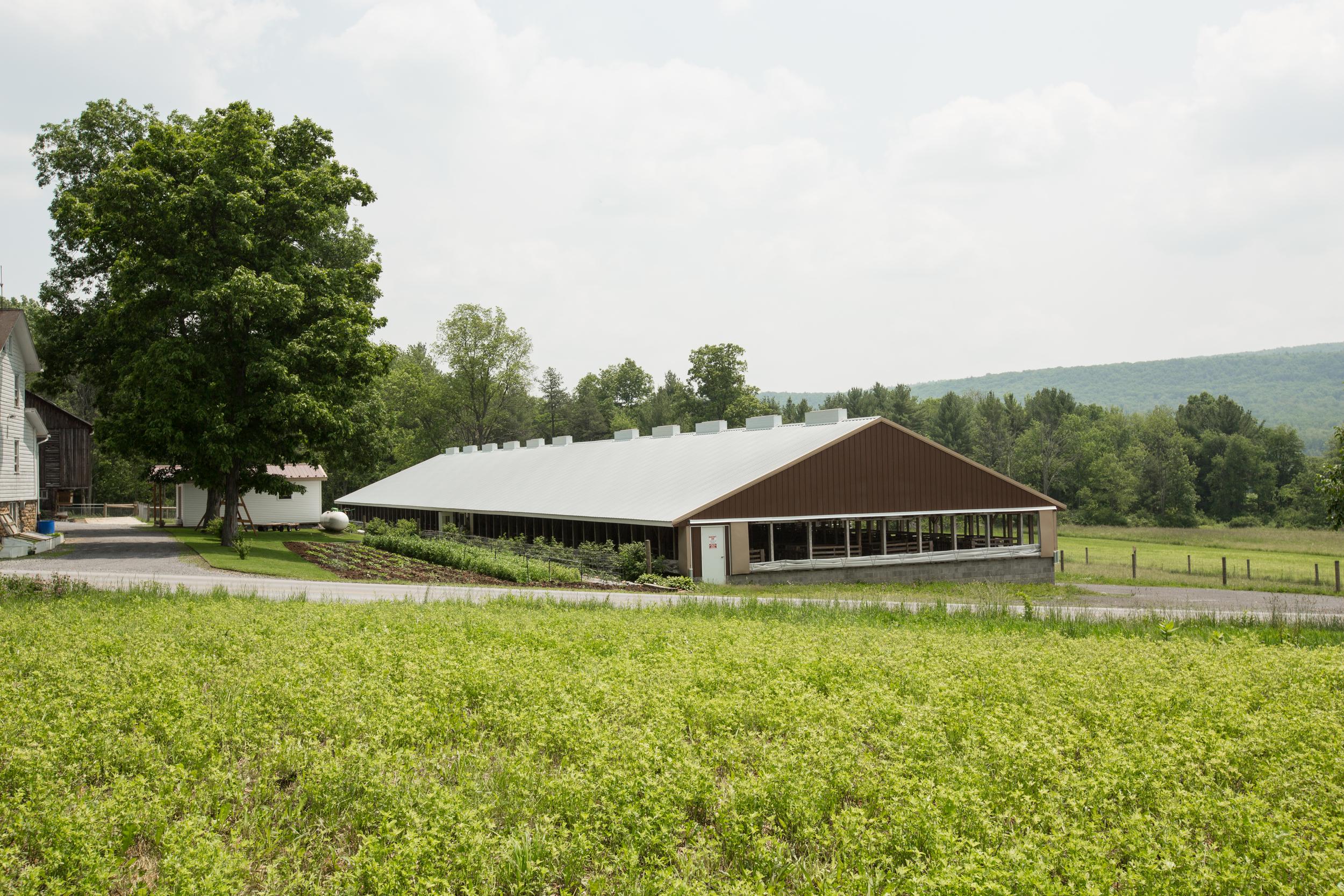brown barn.jpg
