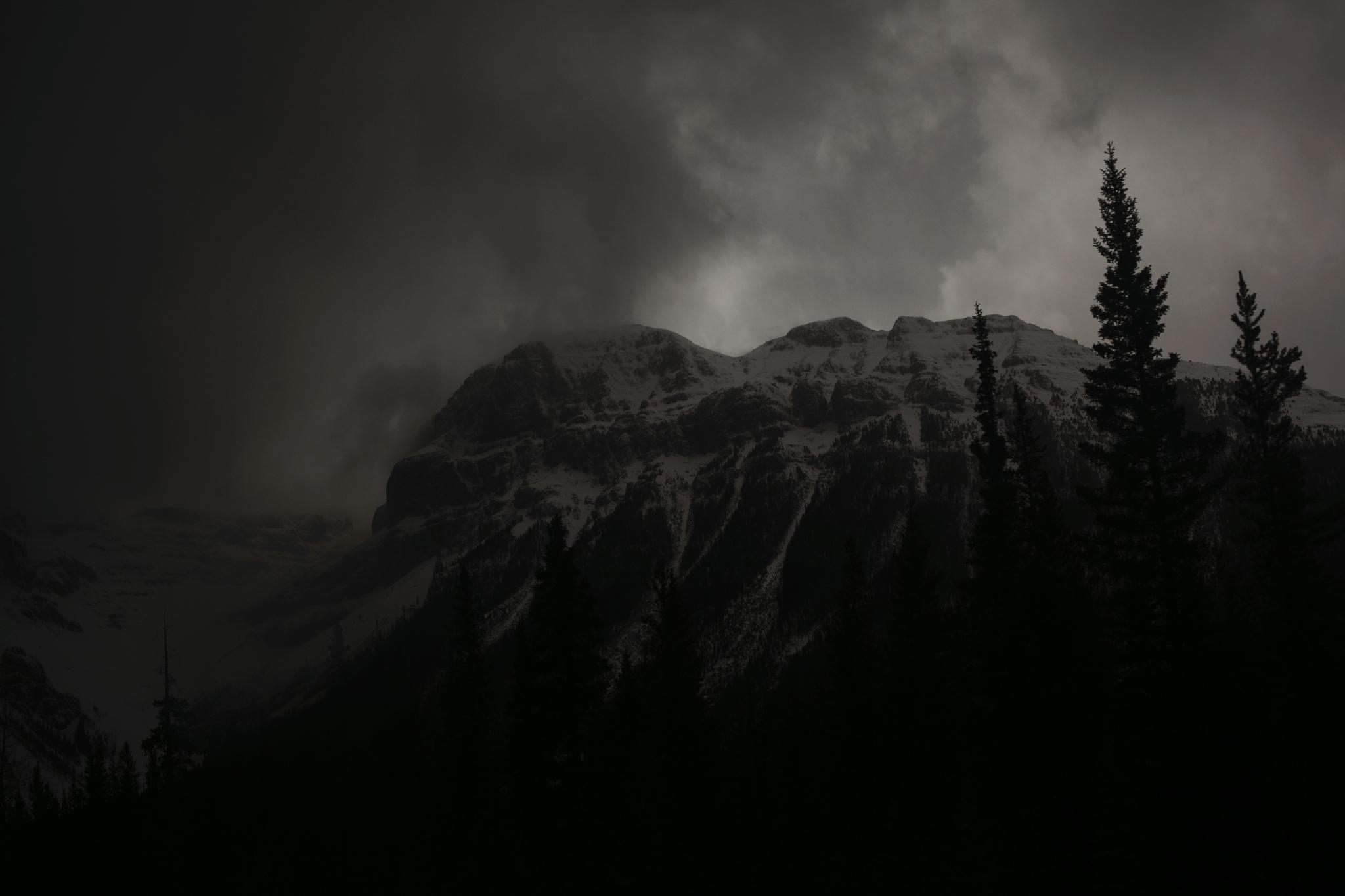 RockiesFacebook2.jpg